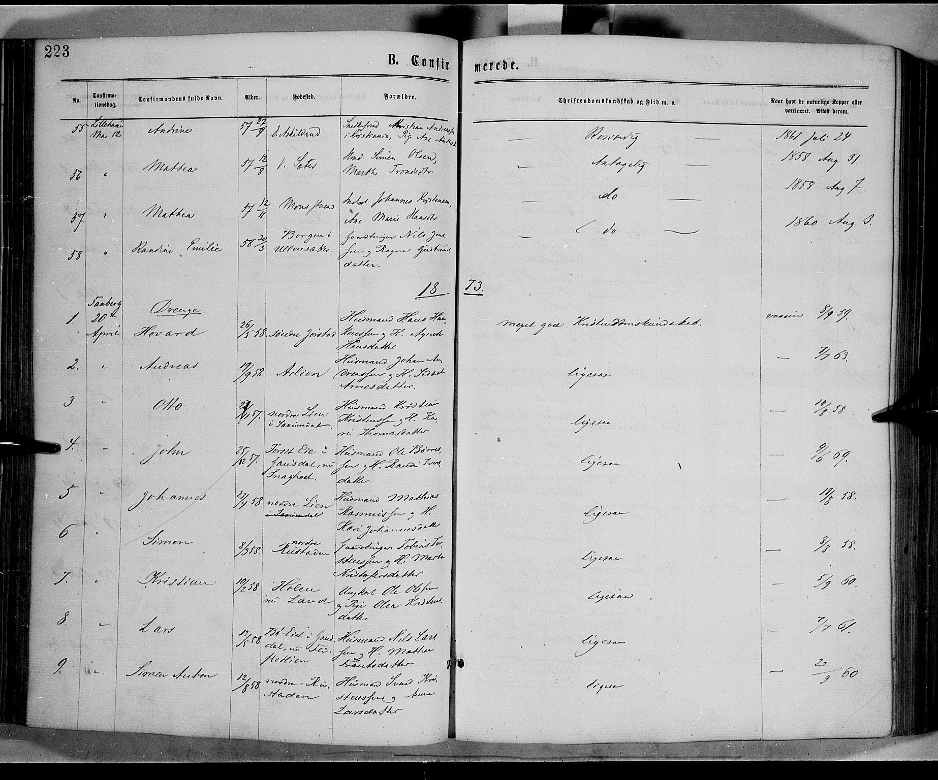 SAH, Fåberg prestekontor, Ministerialbok nr. 7, 1868-1878, s. 223