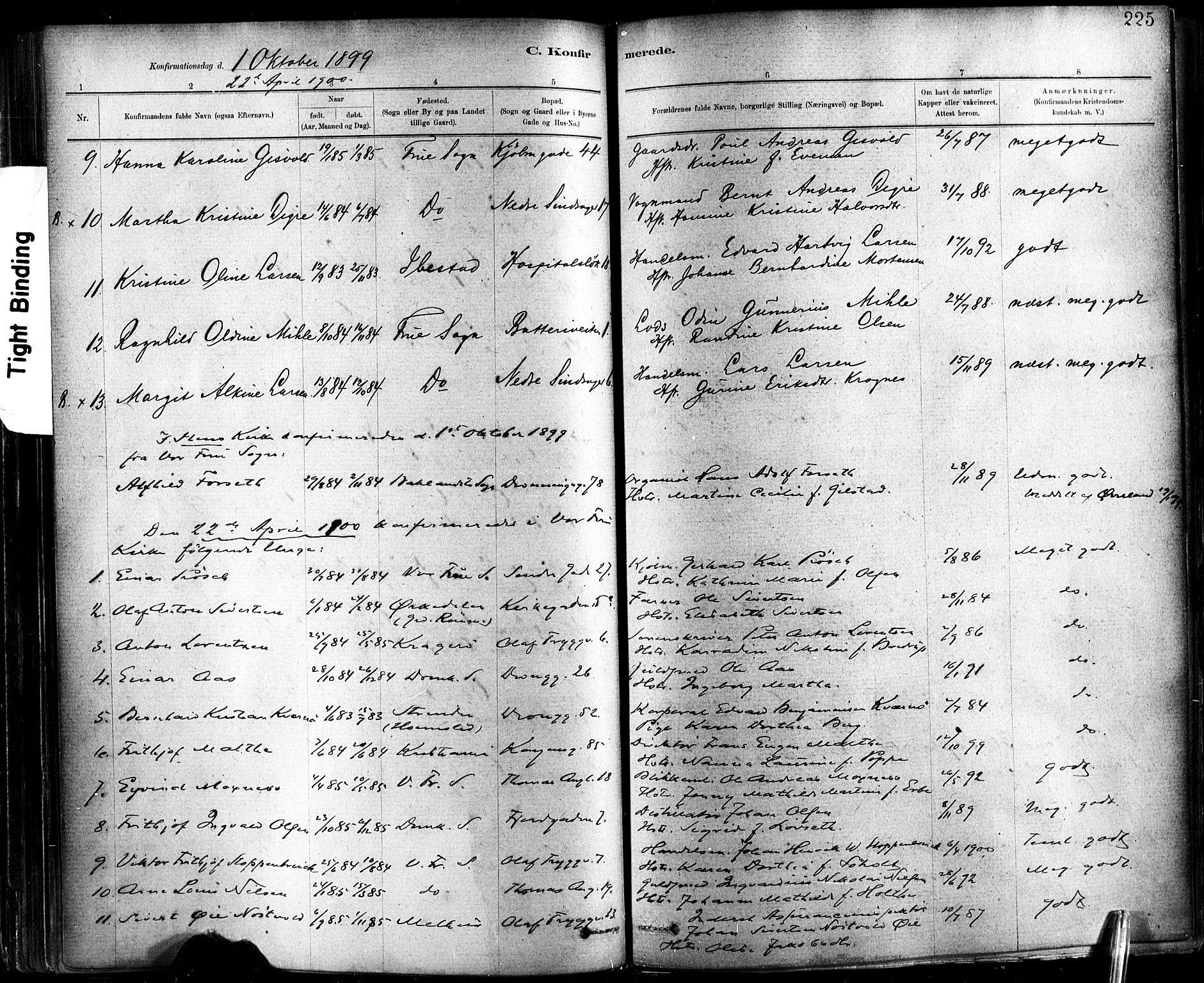 SAT, Ministerialprotokoller, klokkerbøker og fødselsregistre - Sør-Trøndelag, 602/L0119: Ministerialbok nr. 602A17, 1880-1901, s. 225
