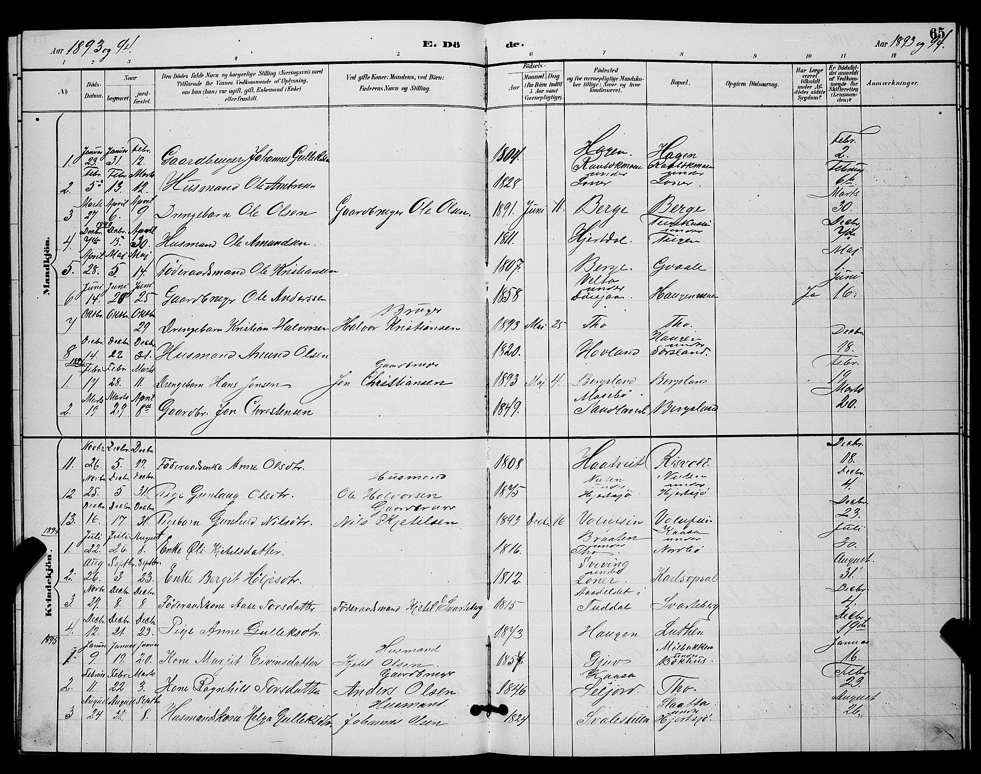 SAKO, Hjartdal kirkebøker, G/Ga/L0003: Klokkerbok nr. I 3, 1889-1896, s. 65