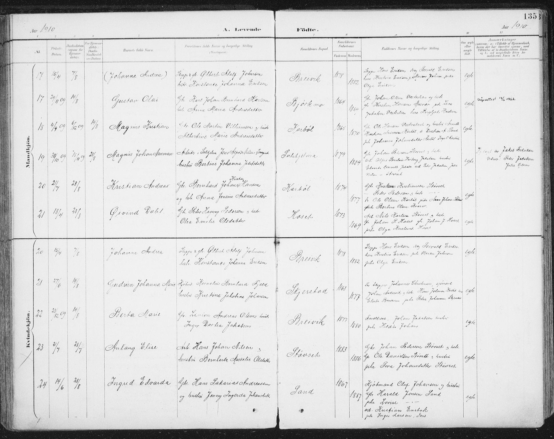 SAT, Ministerialprotokoller, klokkerbøker og fødselsregistre - Nordland, 852/L0741: Ministerialbok nr. 852A11, 1894-1917, s. 135
