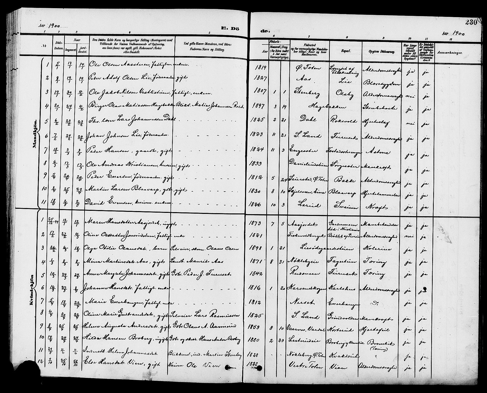 SAH, Vestre Toten prestekontor, H/Ha/Hab/L0010: Klokkerbok nr. 10, 1900-1912, s. 230