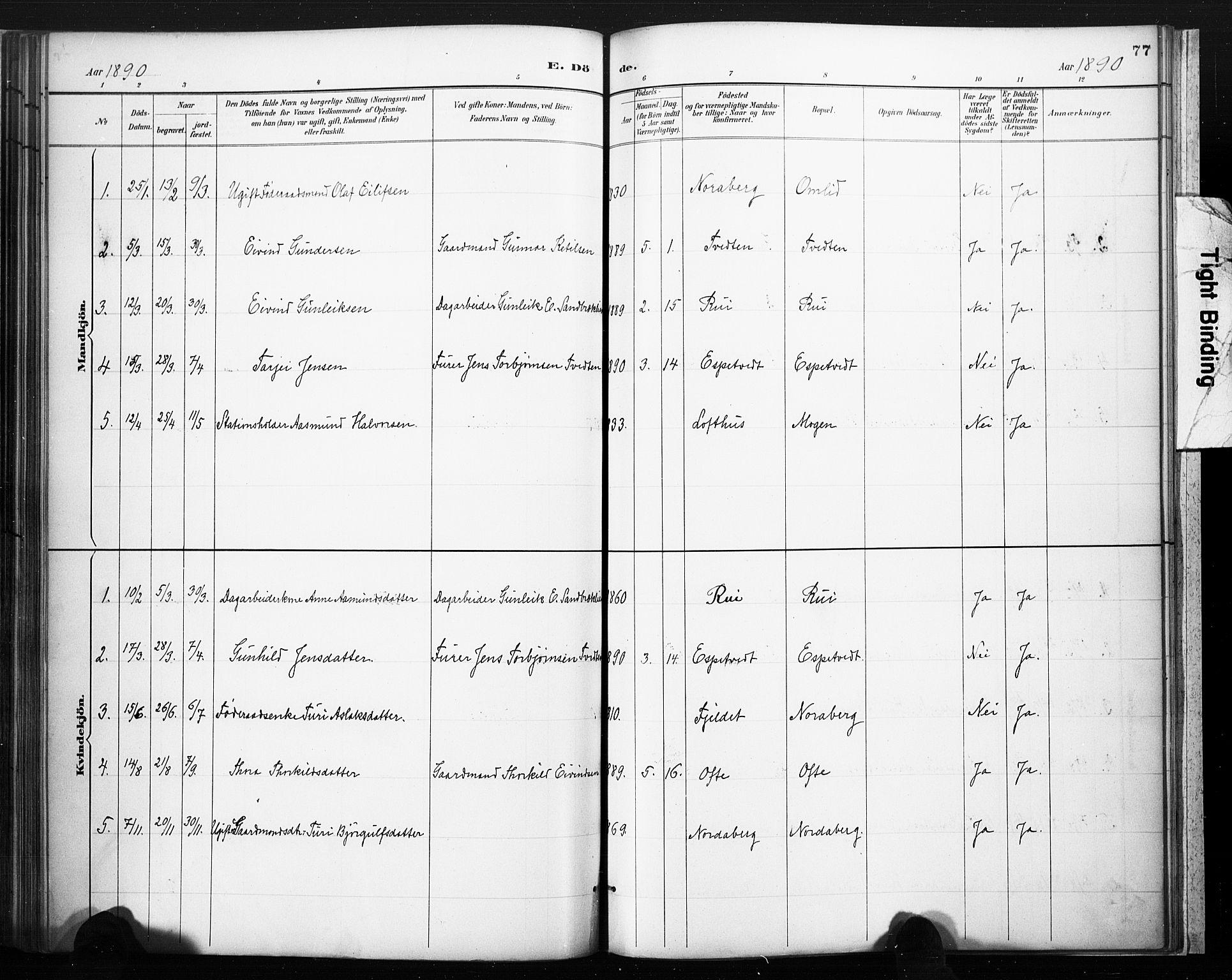 SAKO, Lårdal kirkebøker, F/Fc/L0002: Ministerialbok nr. III 2, 1887-1906, s. 77