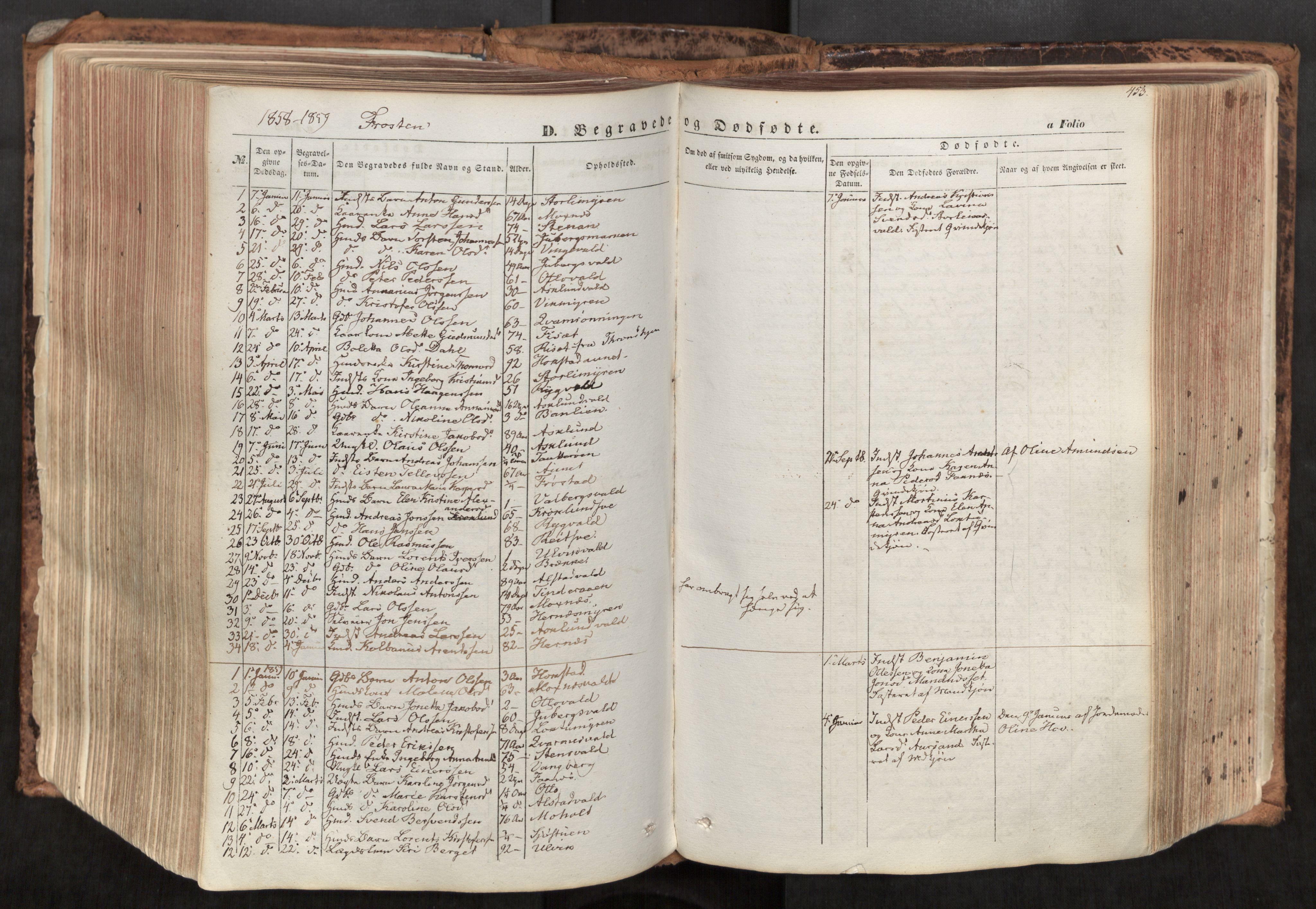 SAT, Ministerialprotokoller, klokkerbøker og fødselsregistre - Nord-Trøndelag, 713/L0116: Ministerialbok nr. 713A07, 1850-1877, s. 453