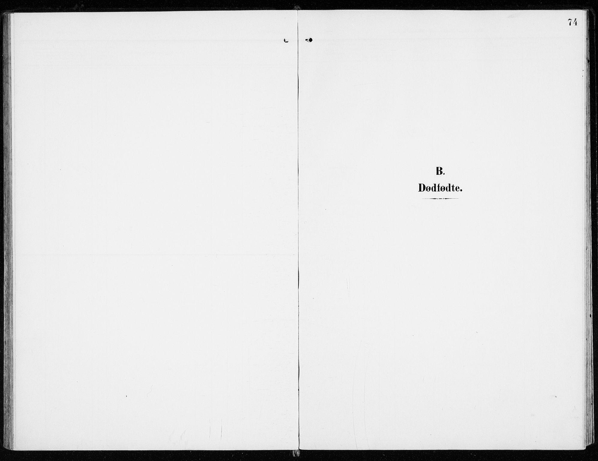 SAH, Sel prestekontor, Ministerialbok nr. 2, 1905-1919, s. 74