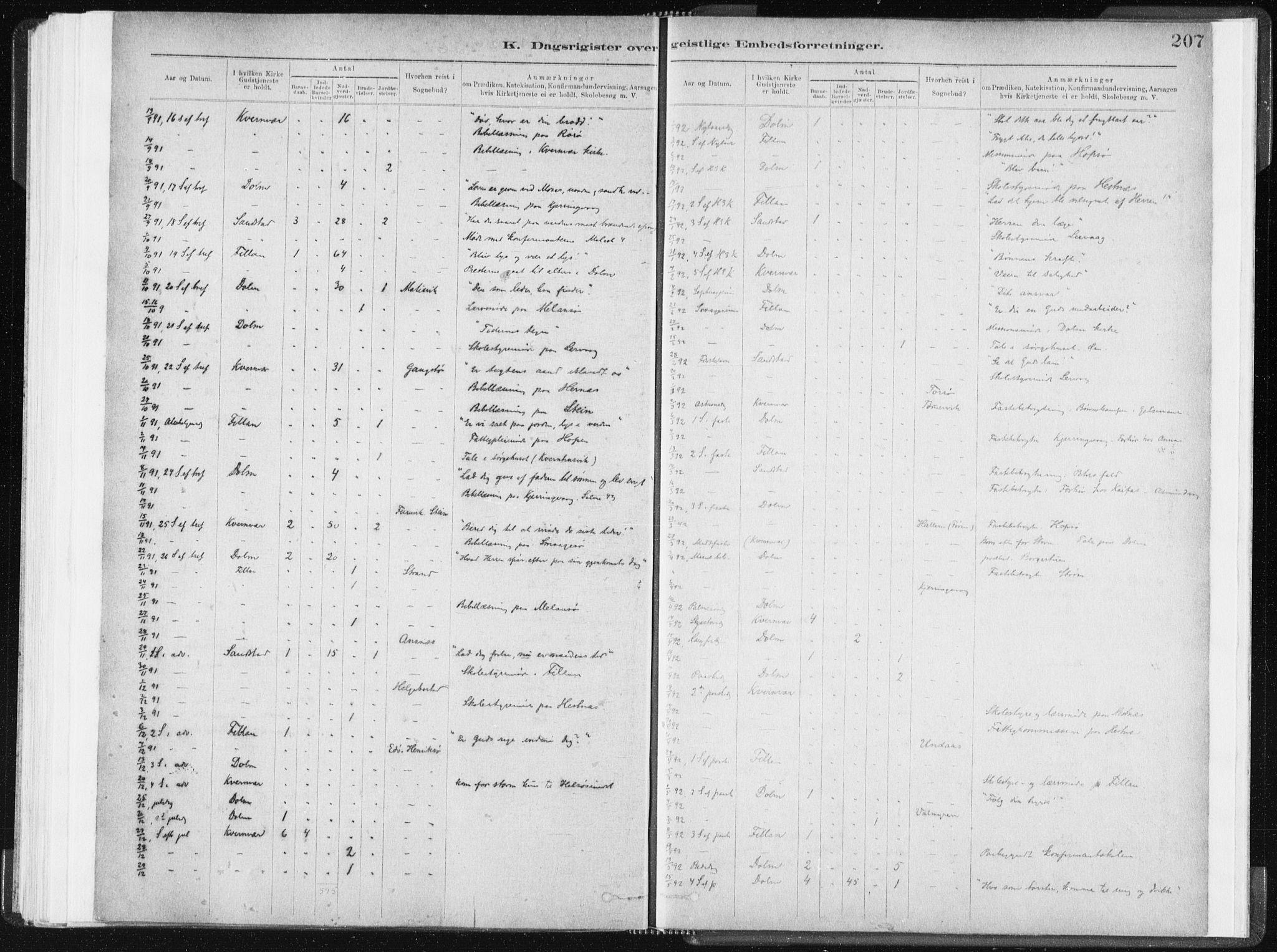 SAT, Ministerialprotokoller, klokkerbøker og fødselsregistre - Sør-Trøndelag, 634/L0533: Ministerialbok nr. 634A09, 1882-1901, s. 207
