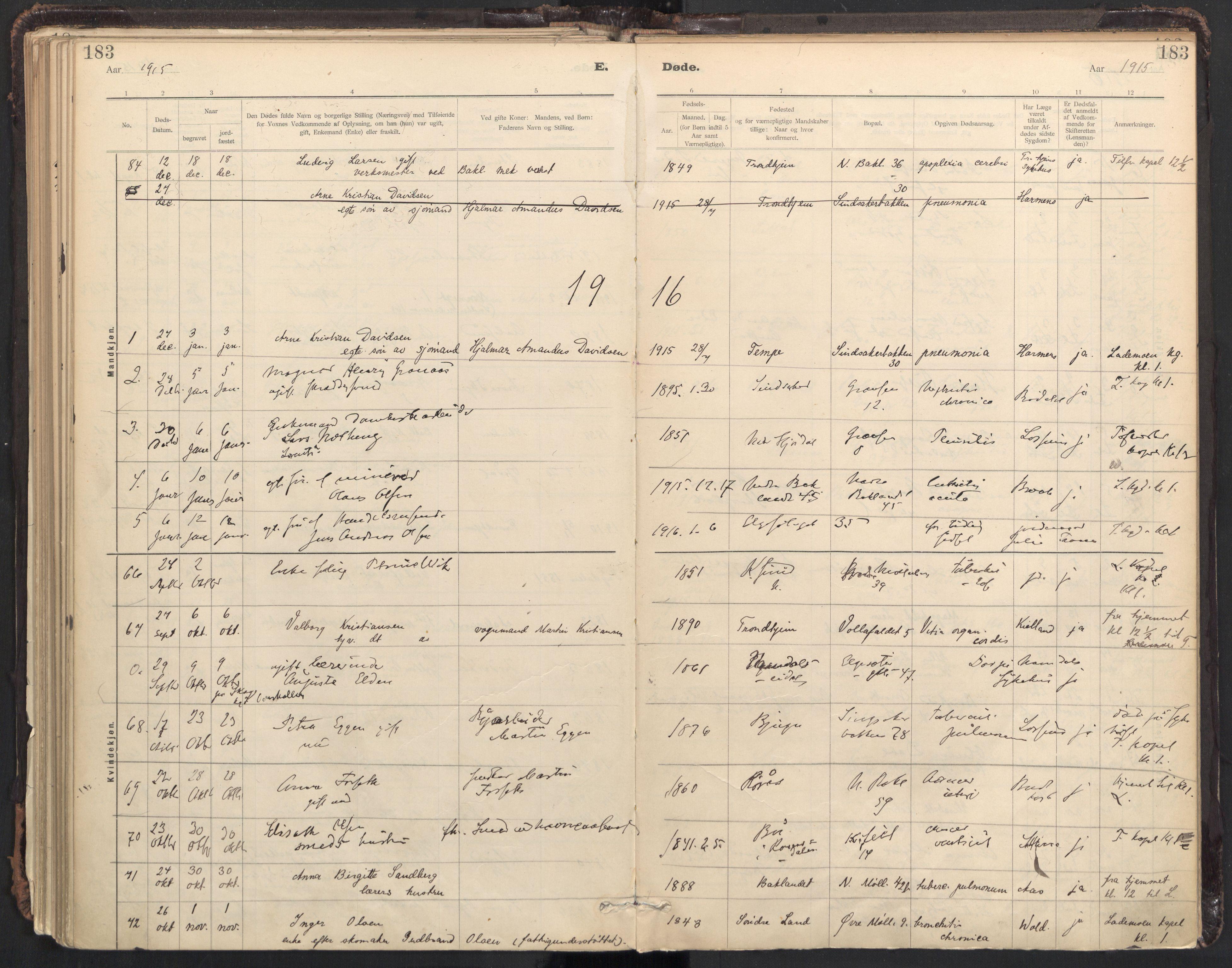 SAT, Ministerialprotokoller, klokkerbøker og fødselsregistre - Sør-Trøndelag, 604/L0204: Ministerialbok nr. 604A24, 1911-1920, s. 183