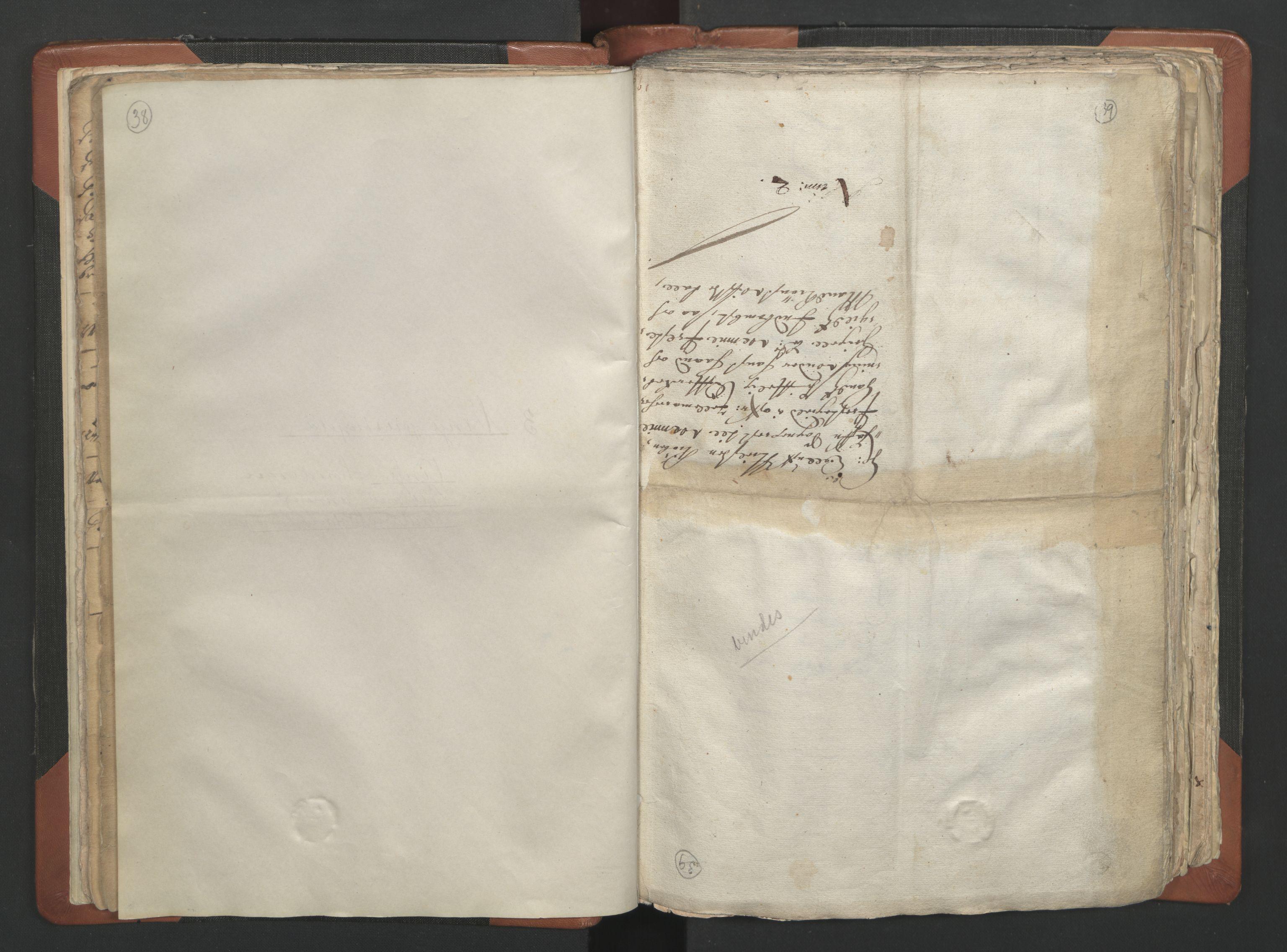 RA, Sogneprestenes manntall 1664-1666, nr. 12: Øvre Telemark prosti, Nedre Telemark prosti og Bamble prosti, 1664-1666, s. 38-39