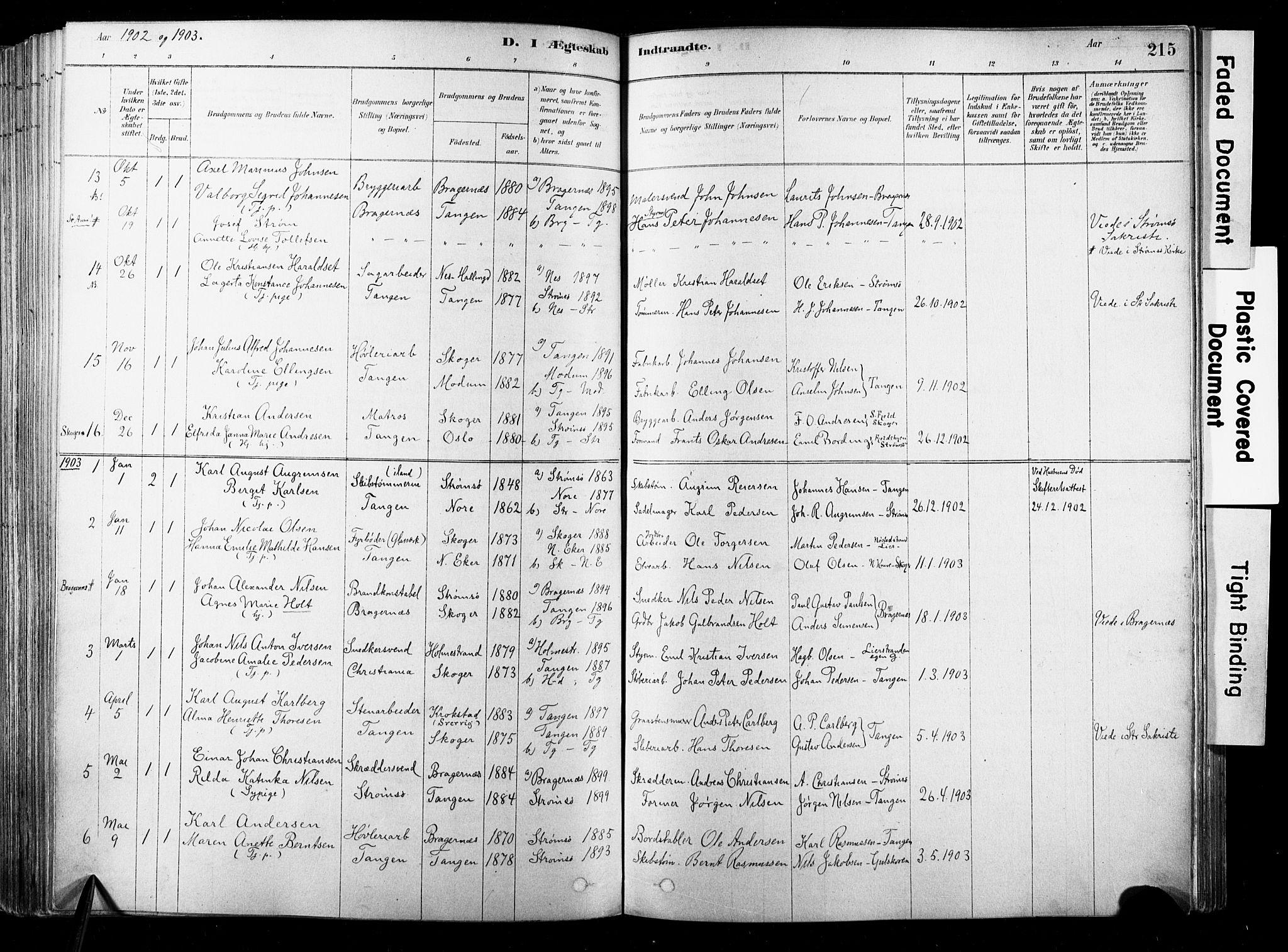 SAKO, Strømsø kirkebøker, F/Fb/L0006: Ministerialbok nr. II 6, 1879-1910, s. 215