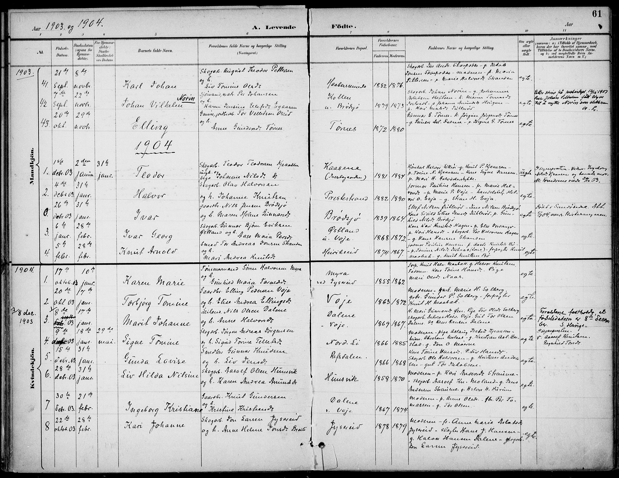 SAKO, Drangedal kirkebøker, F/Fa/L0012: Ministerialbok nr. 12, 1895-1905, s. 61
