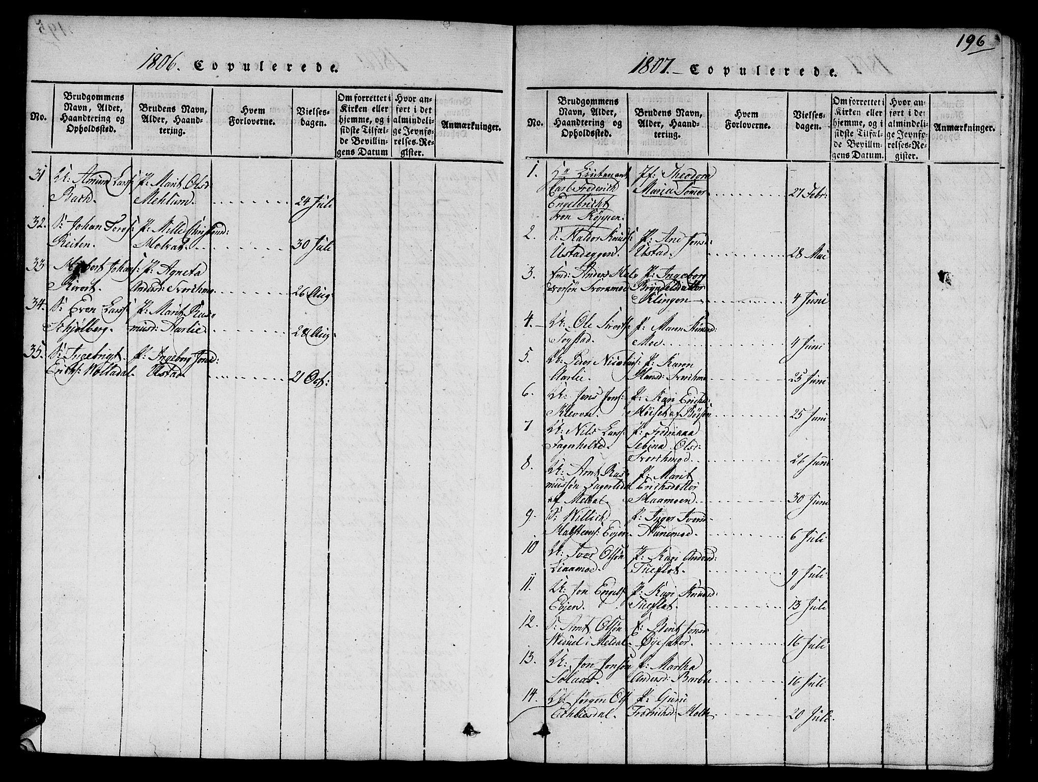 SAT, Ministerialprotokoller, klokkerbøker og fødselsregistre - Sør-Trøndelag, 668/L0803: Ministerialbok nr. 668A03, 1800-1826, s. 196