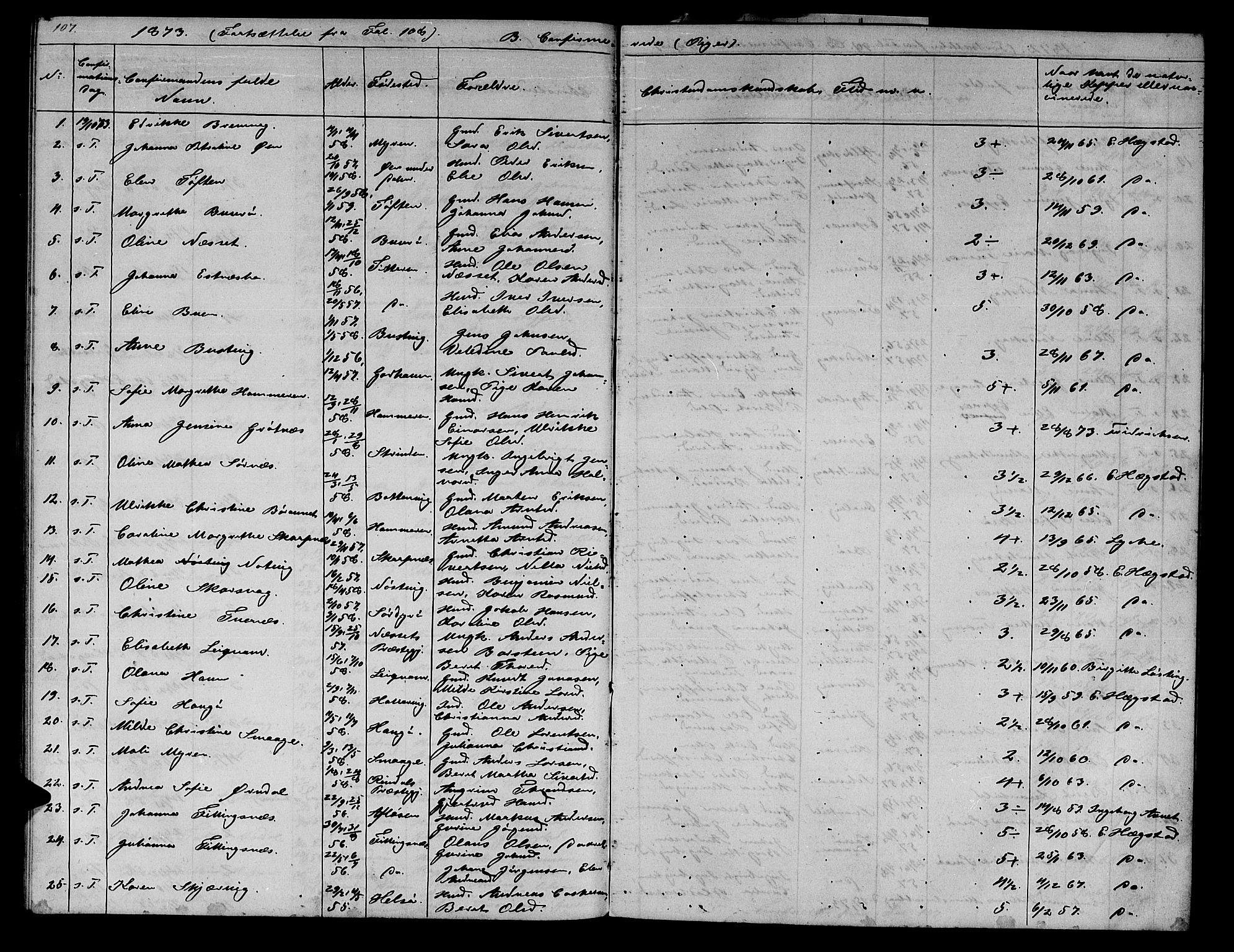 SAT, Ministerialprotokoller, klokkerbøker og fødselsregistre - Sør-Trøndelag, 634/L0539: Klokkerbok nr. 634C01, 1866-1873, s. 107