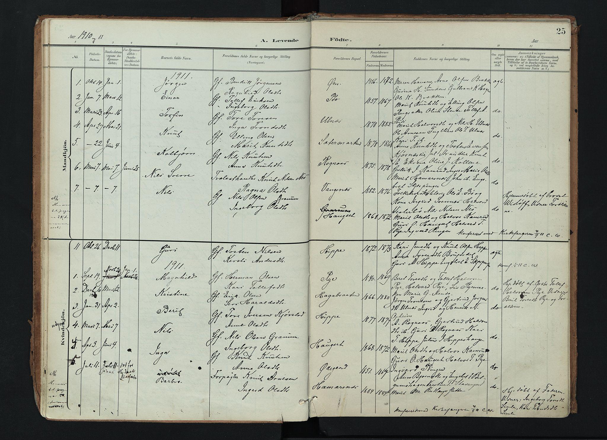 SAH, Nord-Aurdal prestekontor, Ministerialbok nr. 17, 1897-1926, s. 25