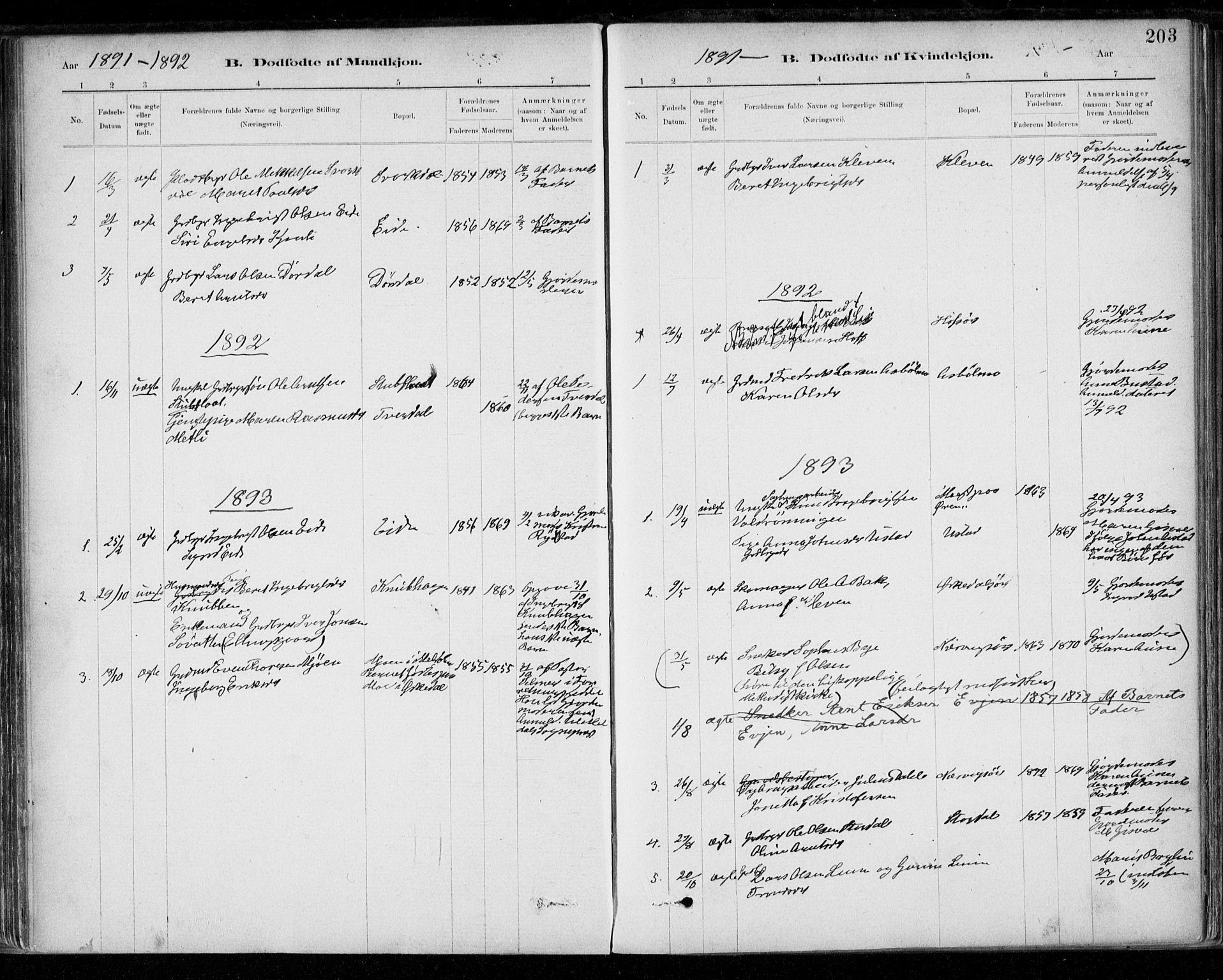 SAT, Ministerialprotokoller, klokkerbøker og fødselsregistre - Sør-Trøndelag, 668/L0809: Ministerialbok nr. 668A09, 1881-1895, s. 203