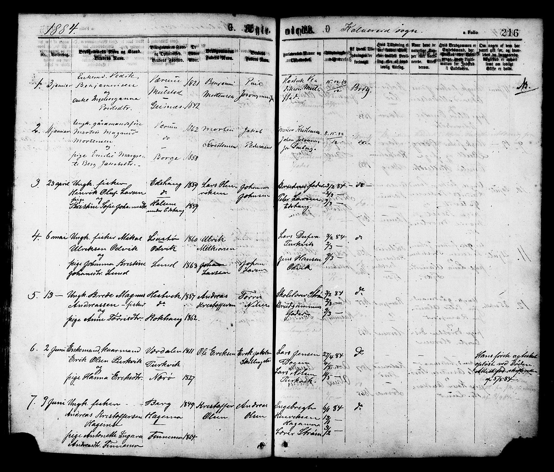 SAT, Ministerialprotokoller, klokkerbøker og fødselsregistre - Nord-Trøndelag, 780/L0642: Ministerialbok nr. 780A07 /1, 1874-1885, s. 216