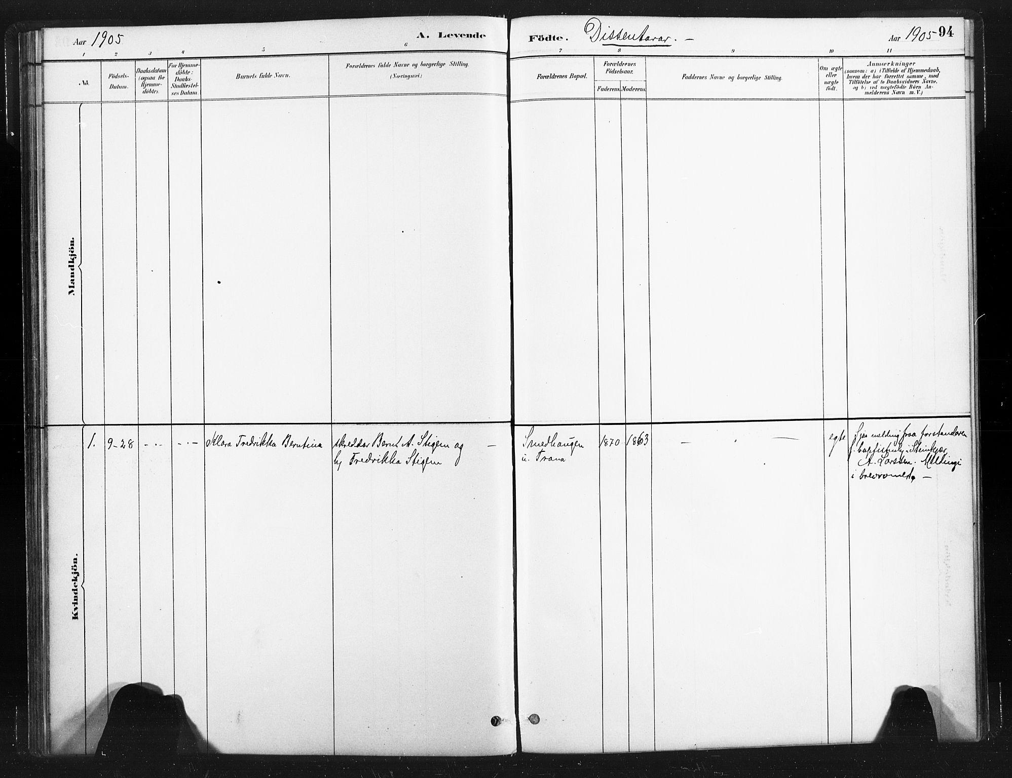 SAT, Ministerialprotokoller, klokkerbøker og fødselsregistre - Nord-Trøndelag, 736/L0361: Ministerialbok nr. 736A01, 1884-1906, s. 94