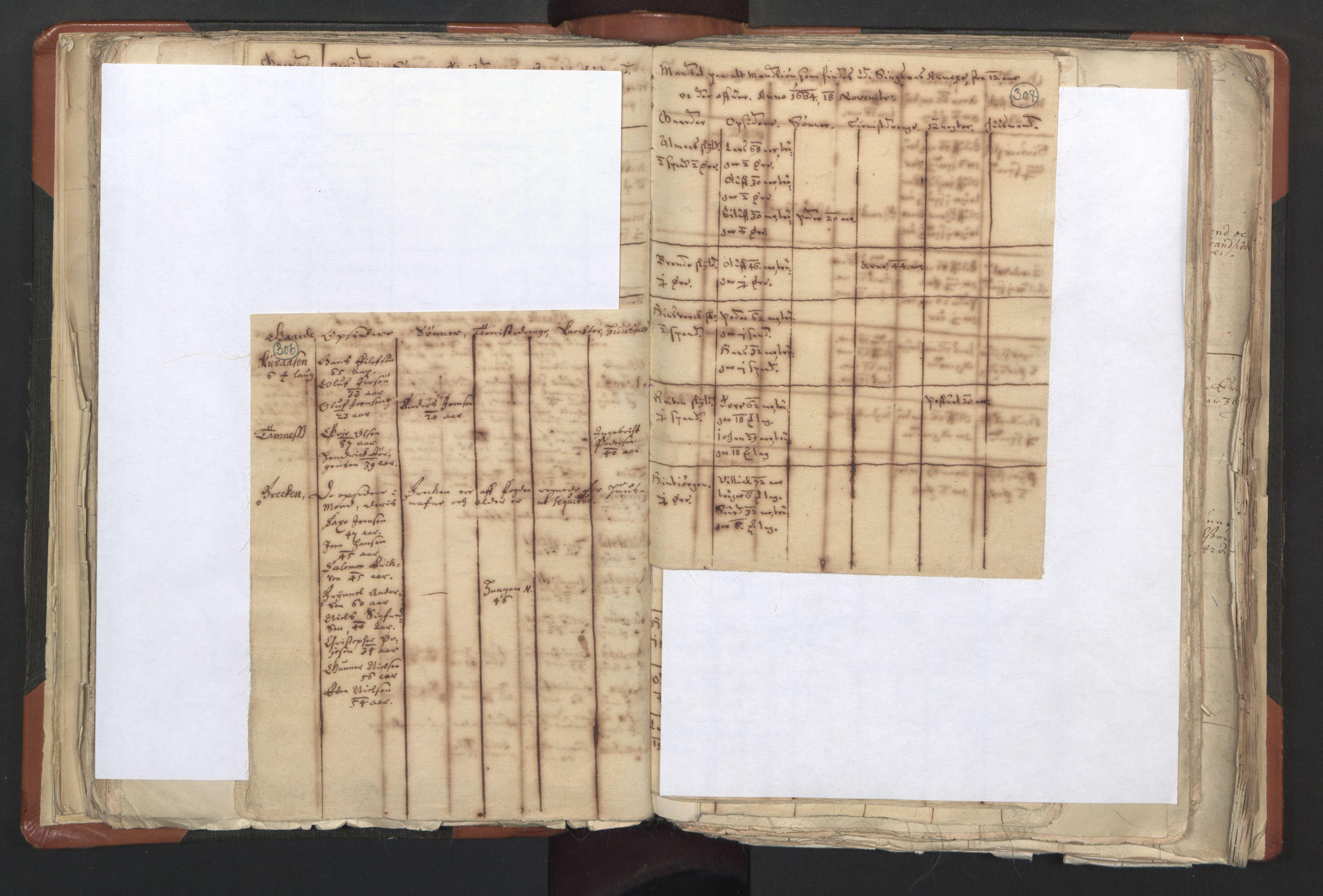 RA, Sogneprestenes manntall 1664-1666, nr. 31: Dalane prosti, 1664-1666, s. 306-307
