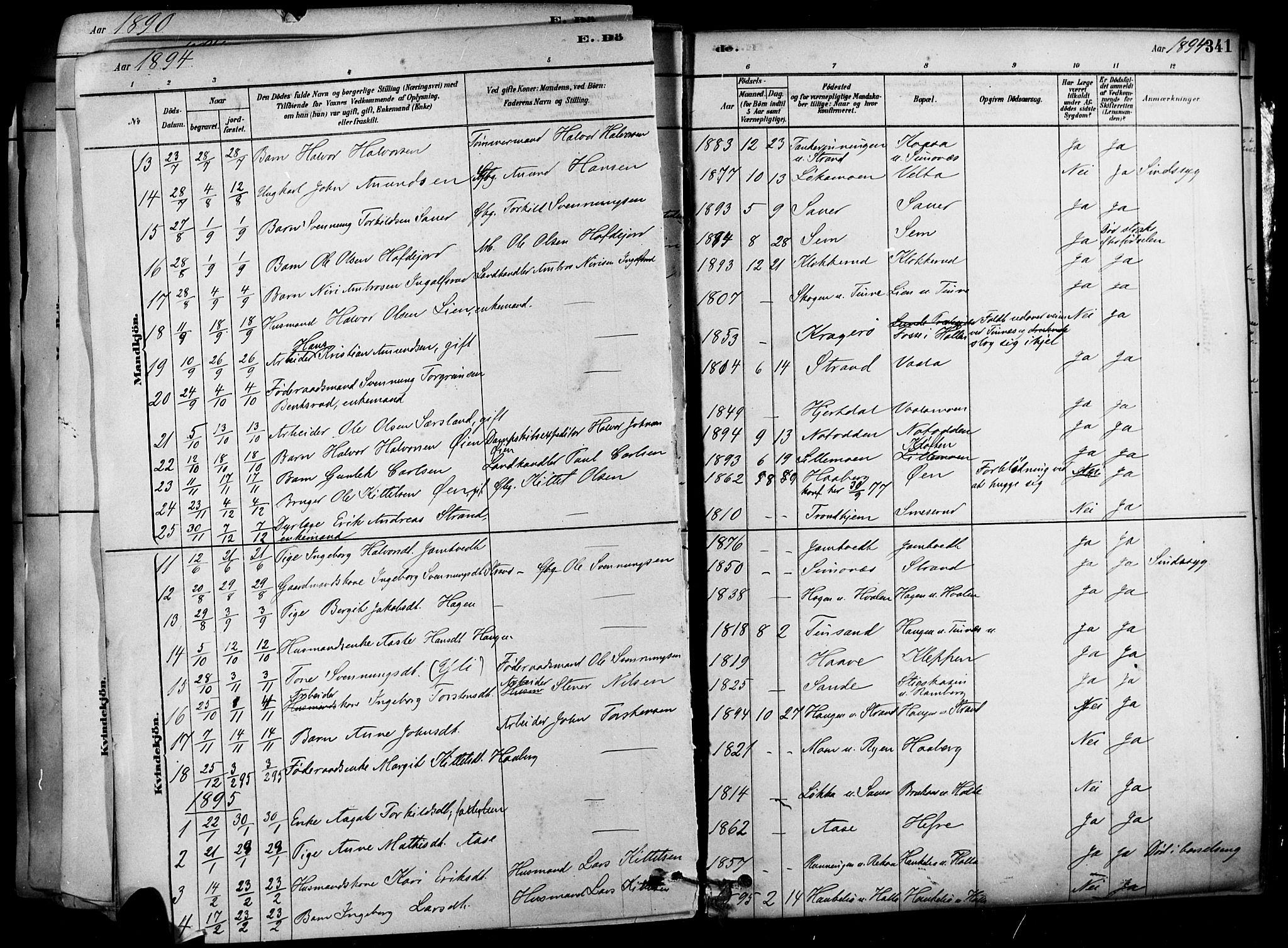SAKO, Heddal kirkebøker, F/Fa/L0008: Ministerialbok nr. I 8, 1878-1903, s. 341