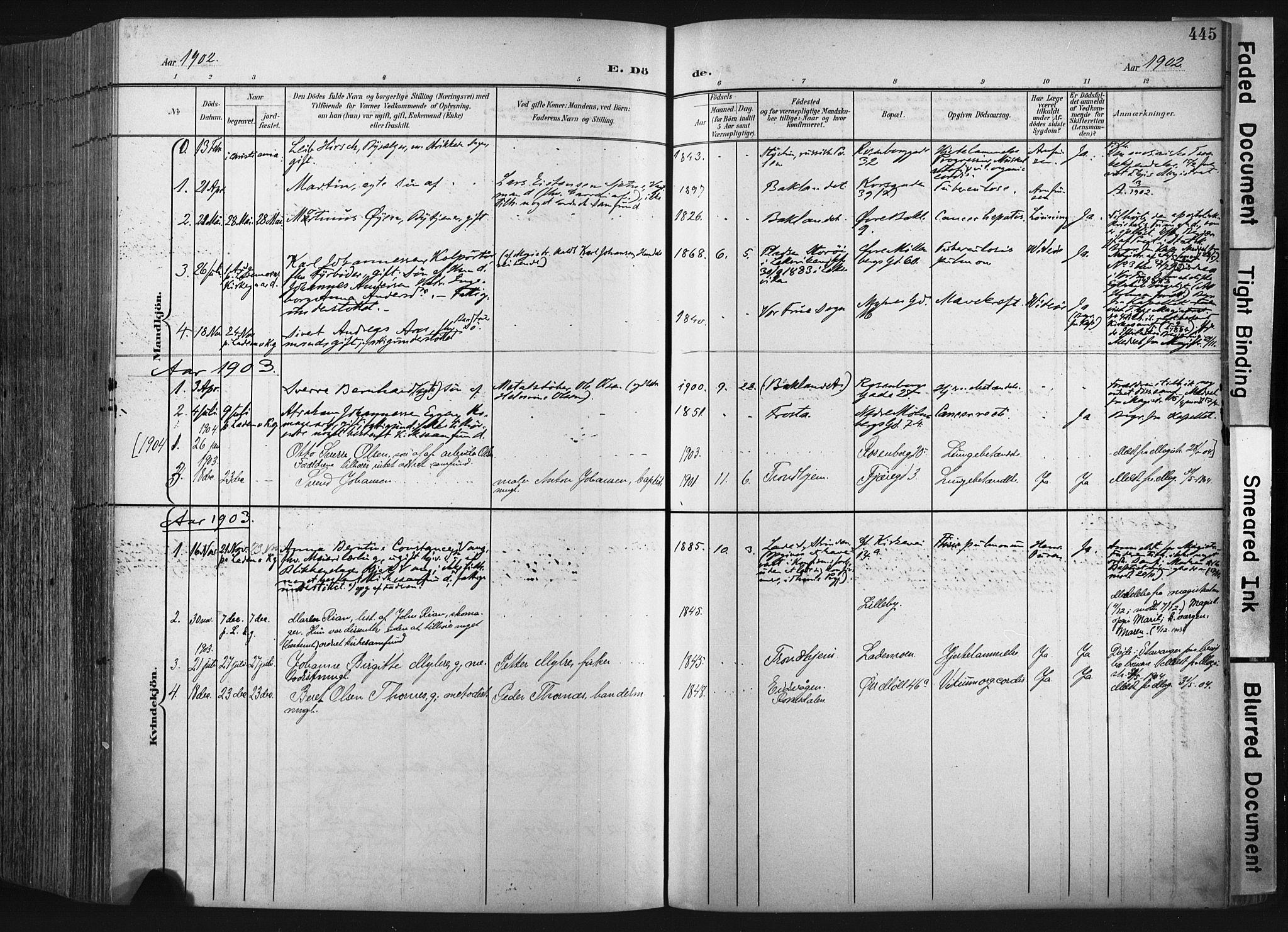 SAT, Ministerialprotokoller, klokkerbøker og fødselsregistre - Sør-Trøndelag, 604/L0201: Ministerialbok nr. 604A21, 1901-1911, s. 445