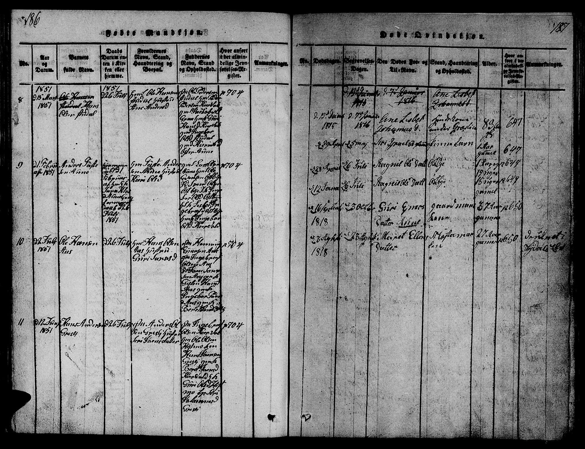 SAT, Ministerialprotokoller, klokkerbøker og fødselsregistre - Sør-Trøndelag, 698/L1164: Klokkerbok nr. 698C01, 1816-1861, s. 186-187