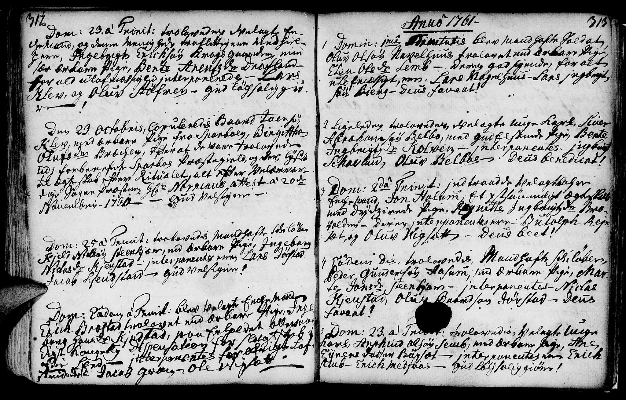 SAT, Ministerialprotokoller, klokkerbøker og fødselsregistre - Nord-Trøndelag, 749/L0467: Ministerialbok nr. 749A01, 1733-1787, s. 312-313
