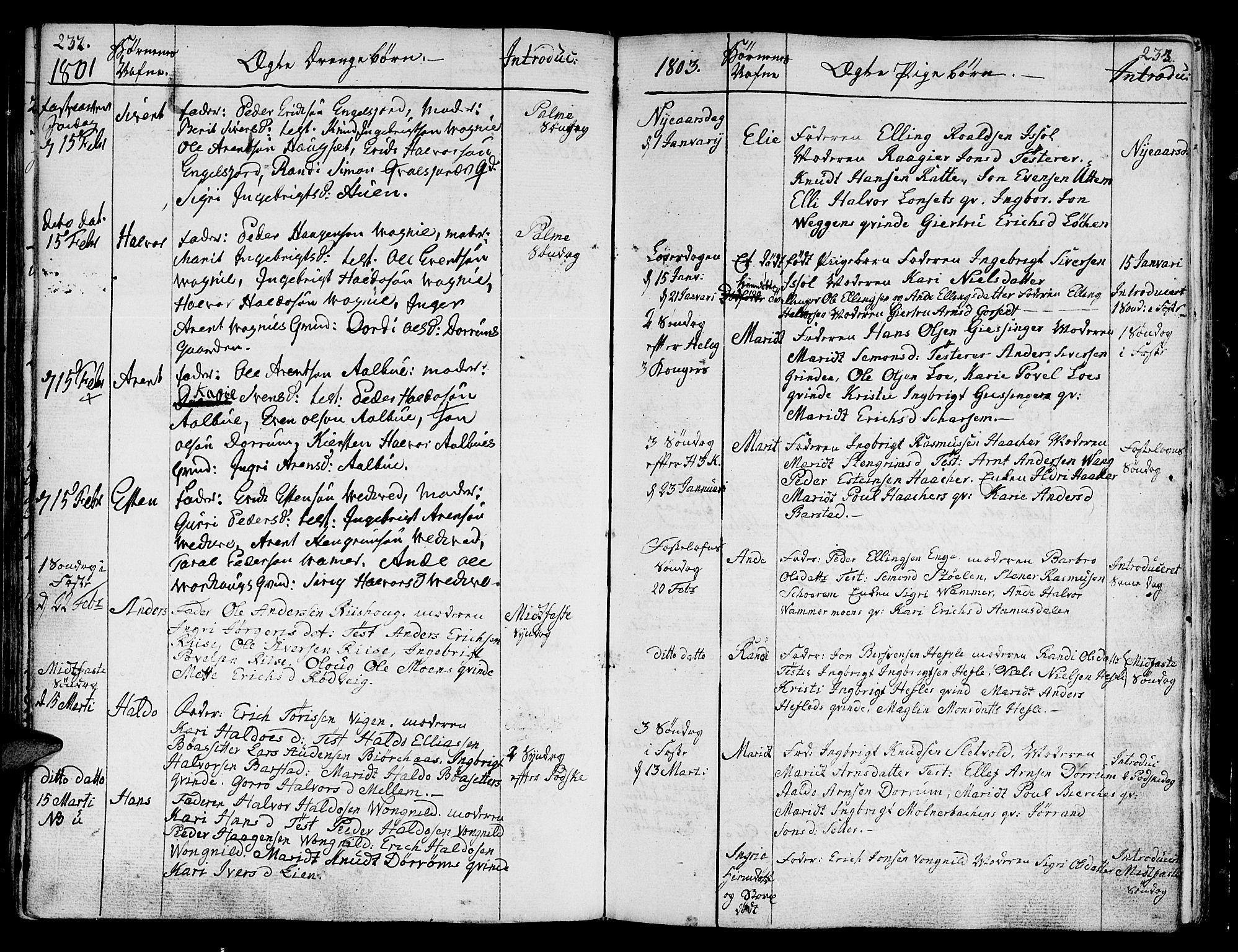 SAT, Ministerialprotokoller, klokkerbøker og fødselsregistre - Sør-Trøndelag, 678/L0893: Ministerialbok nr. 678A03, 1792-1805, s. 232-233