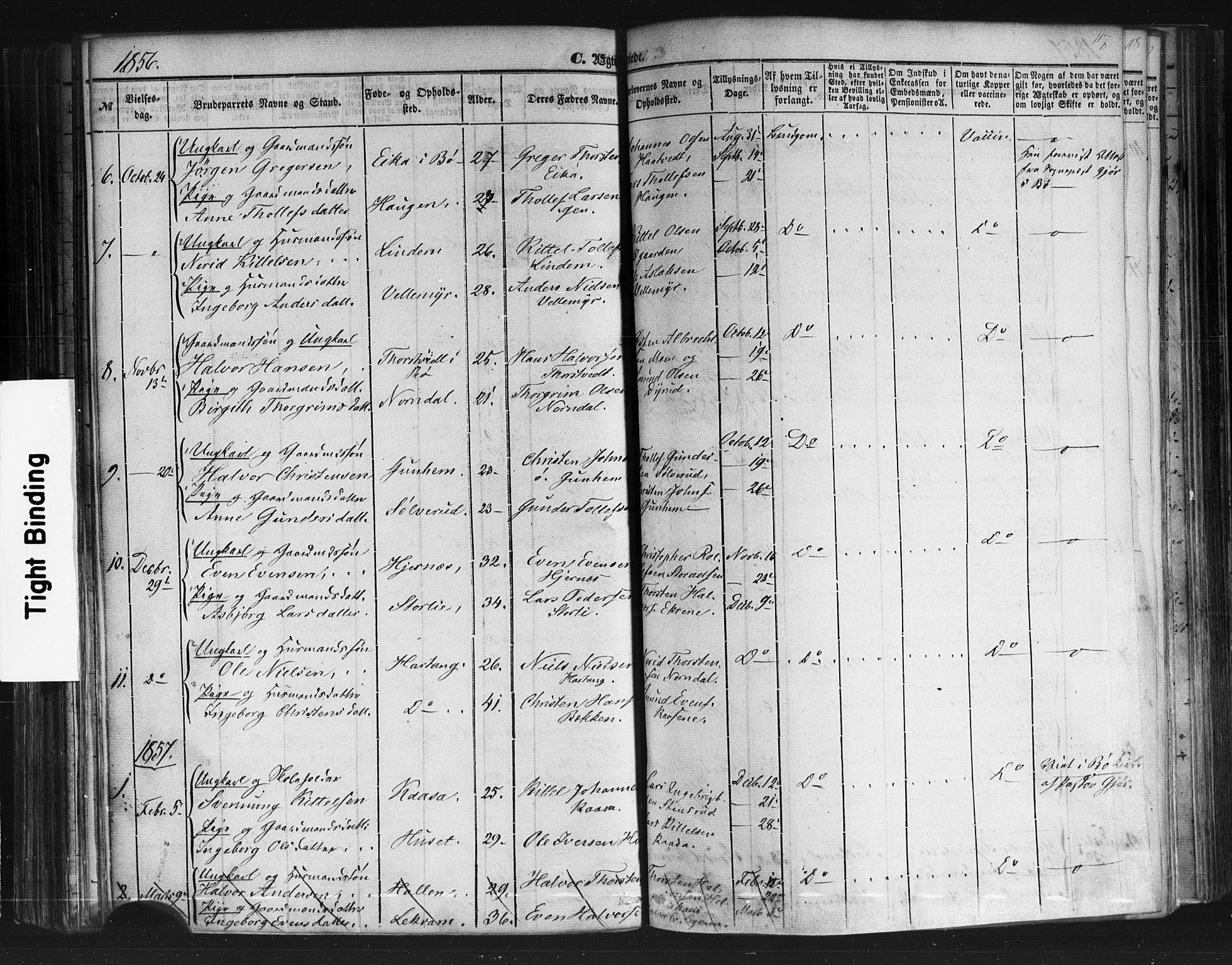 SAKO, Sauherad kirkebøker, F/Fb/L0001: Ministerialbok nr. II 1, 1851-1877, s. 117