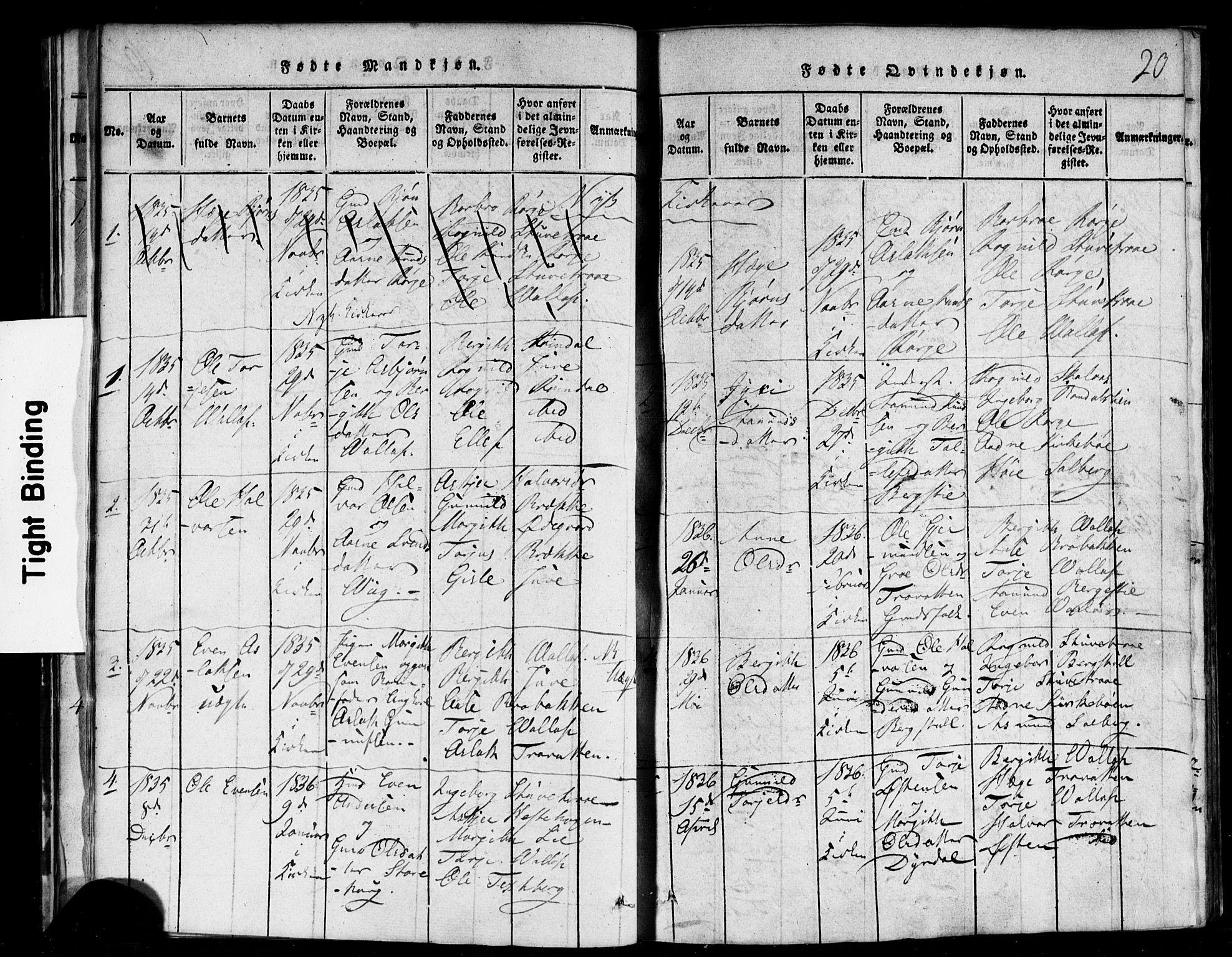 SAKO, Rauland kirkebøker, F/Fa/L0002: Ministerialbok nr. 2, 1815-1860, s. 20
