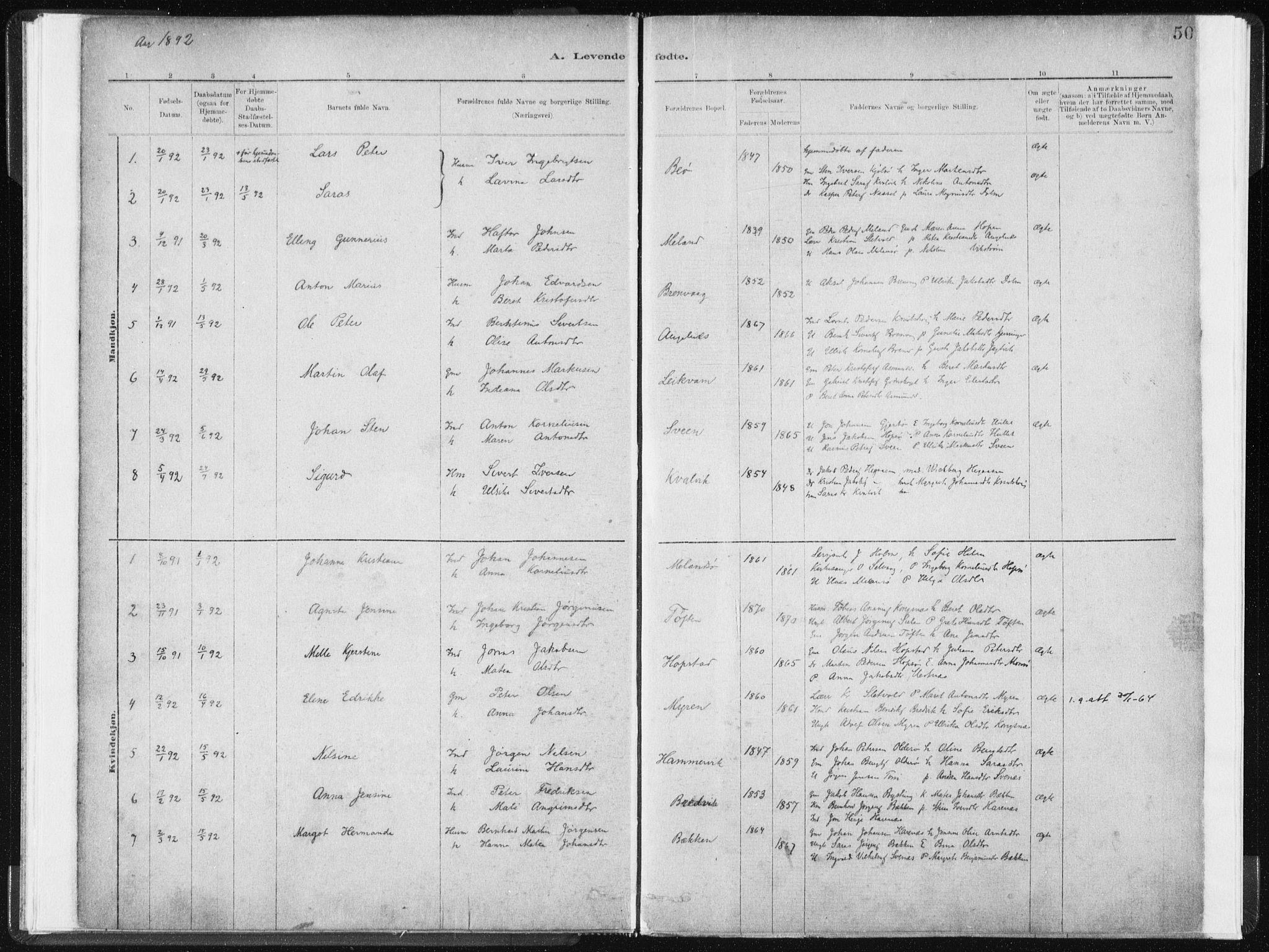 SAT, Ministerialprotokoller, klokkerbøker og fødselsregistre - Sør-Trøndelag, 634/L0533: Ministerialbok nr. 634A09, 1882-1901, s. 50