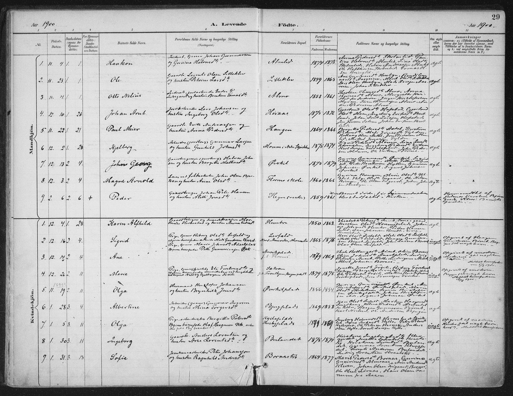 SAT, Ministerialprotokoller, klokkerbøker og fødselsregistre - Nord-Trøndelag, 703/L0031: Ministerialbok nr. 703A04, 1893-1914, s. 29