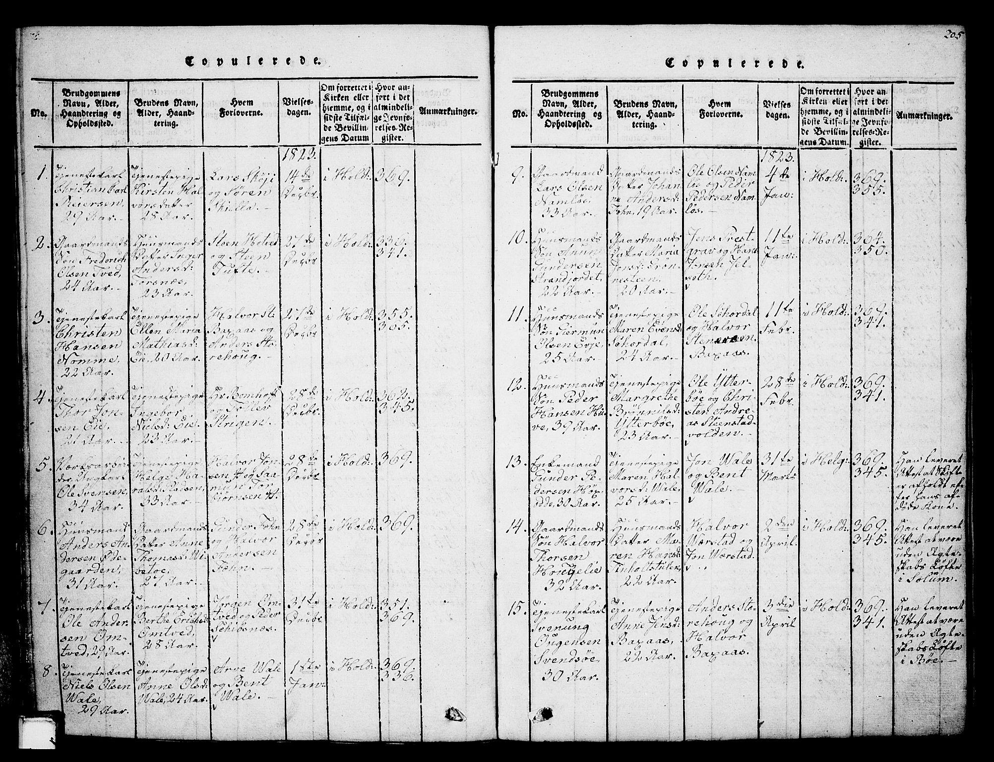 SAKO, Holla kirkebøker, G/Ga/L0001: Klokkerbok nr. I 1, 1814-1830, s. 205
