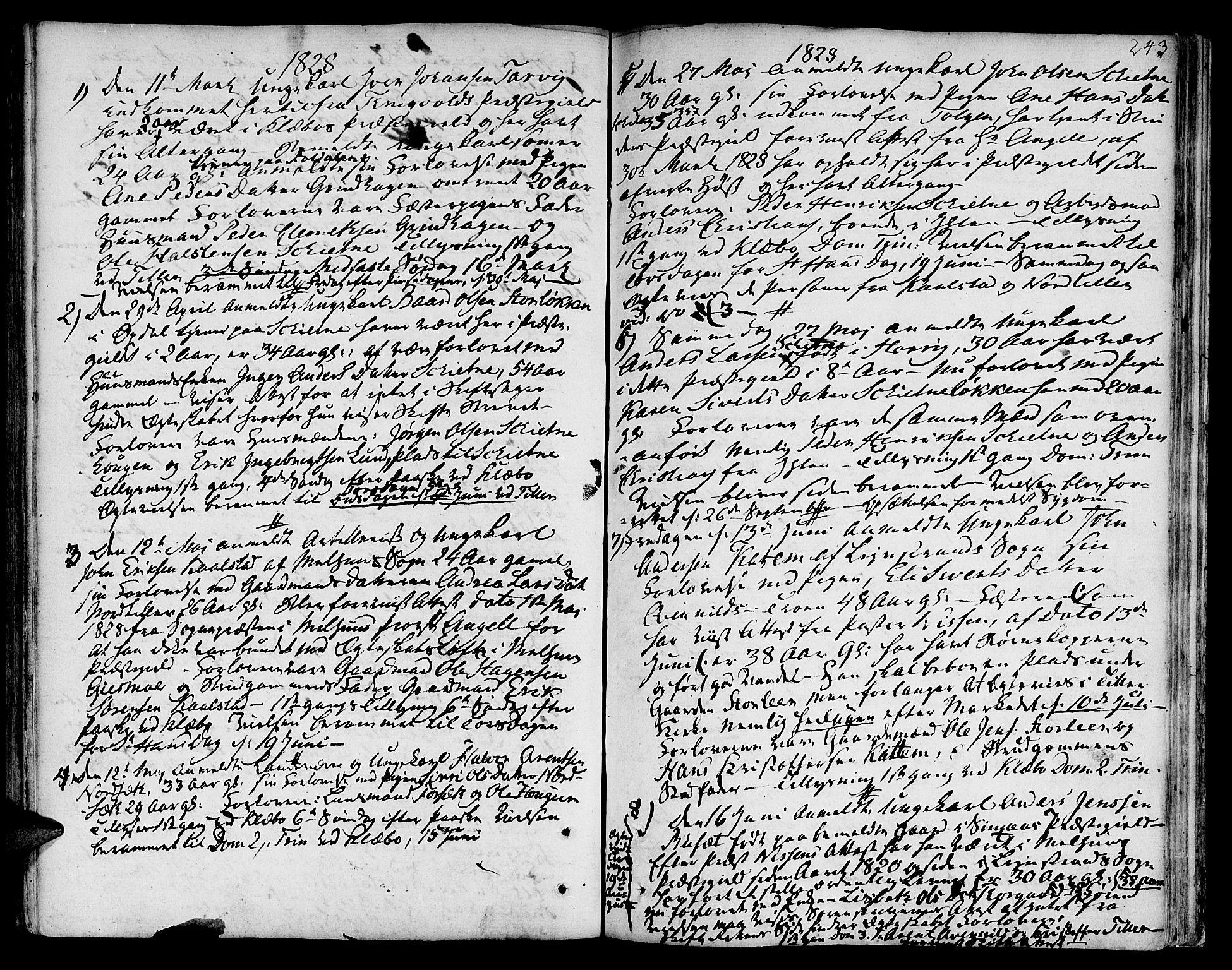 SAT, Ministerialprotokoller, klokkerbøker og fødselsregistre - Sør-Trøndelag, 618/L0438: Ministerialbok nr. 618A03, 1783-1815, s. 243
