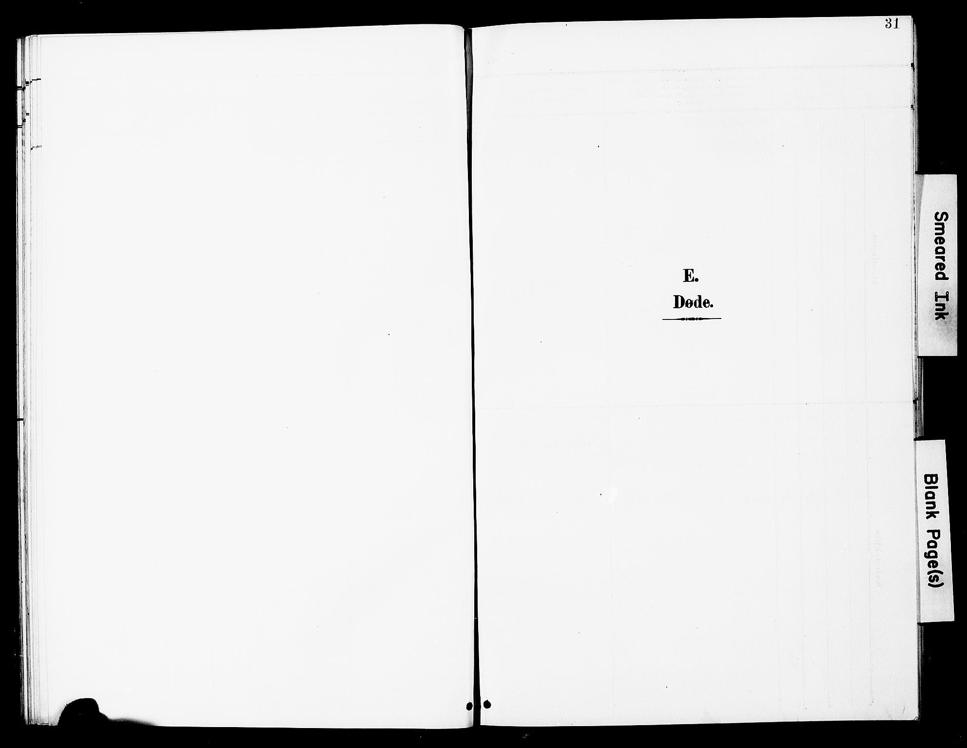 SAT, Ministerialprotokoller, klokkerbøker og fødselsregistre - Nord-Trøndelag, 748/L0464: Ministerialbok nr. 748A01, 1900-1908, s. 31