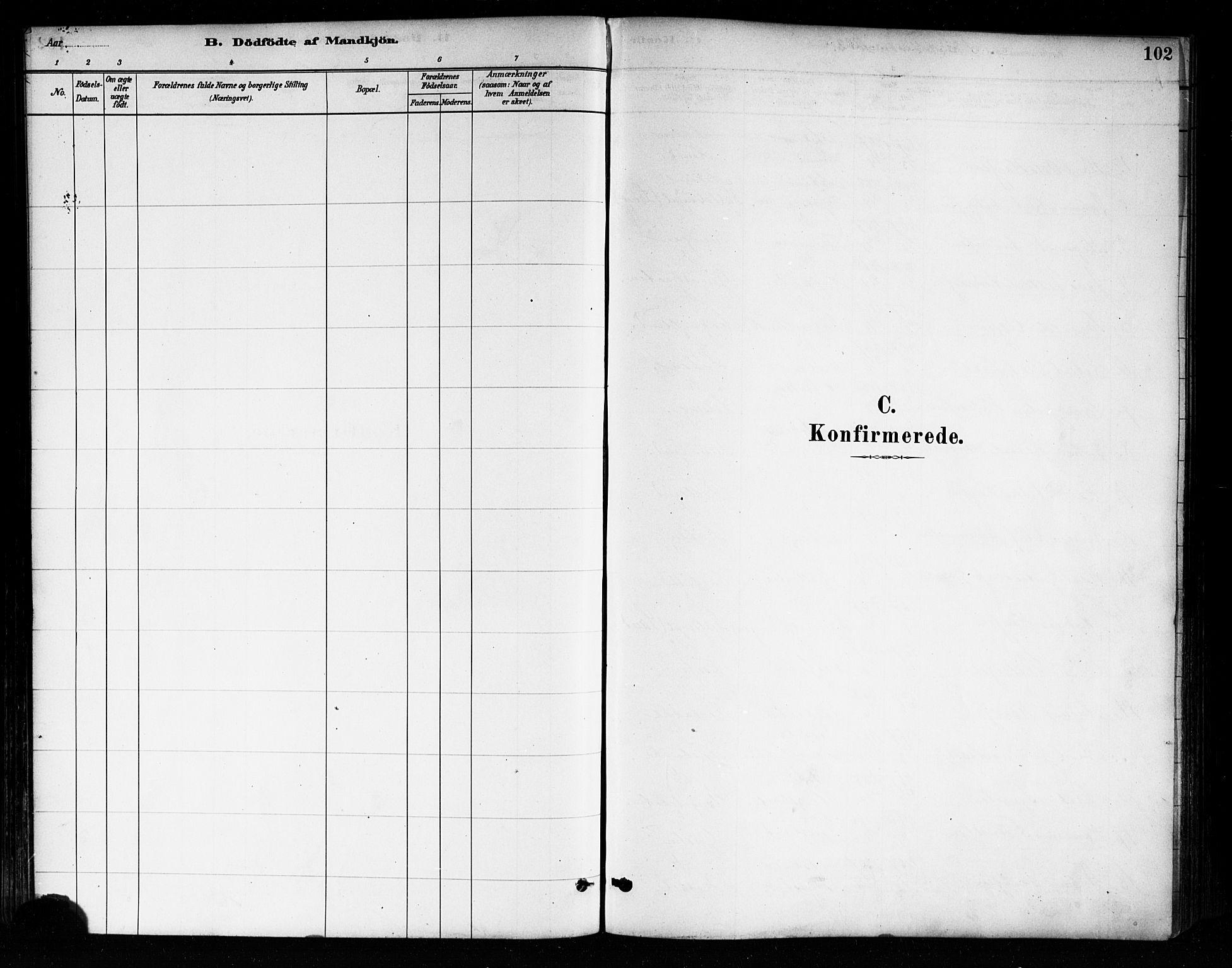 SAO, Askim prestekontor Kirkebøker, F/Fa/L0007: Ministerialbok nr. 7, 1882-1897, s. 102