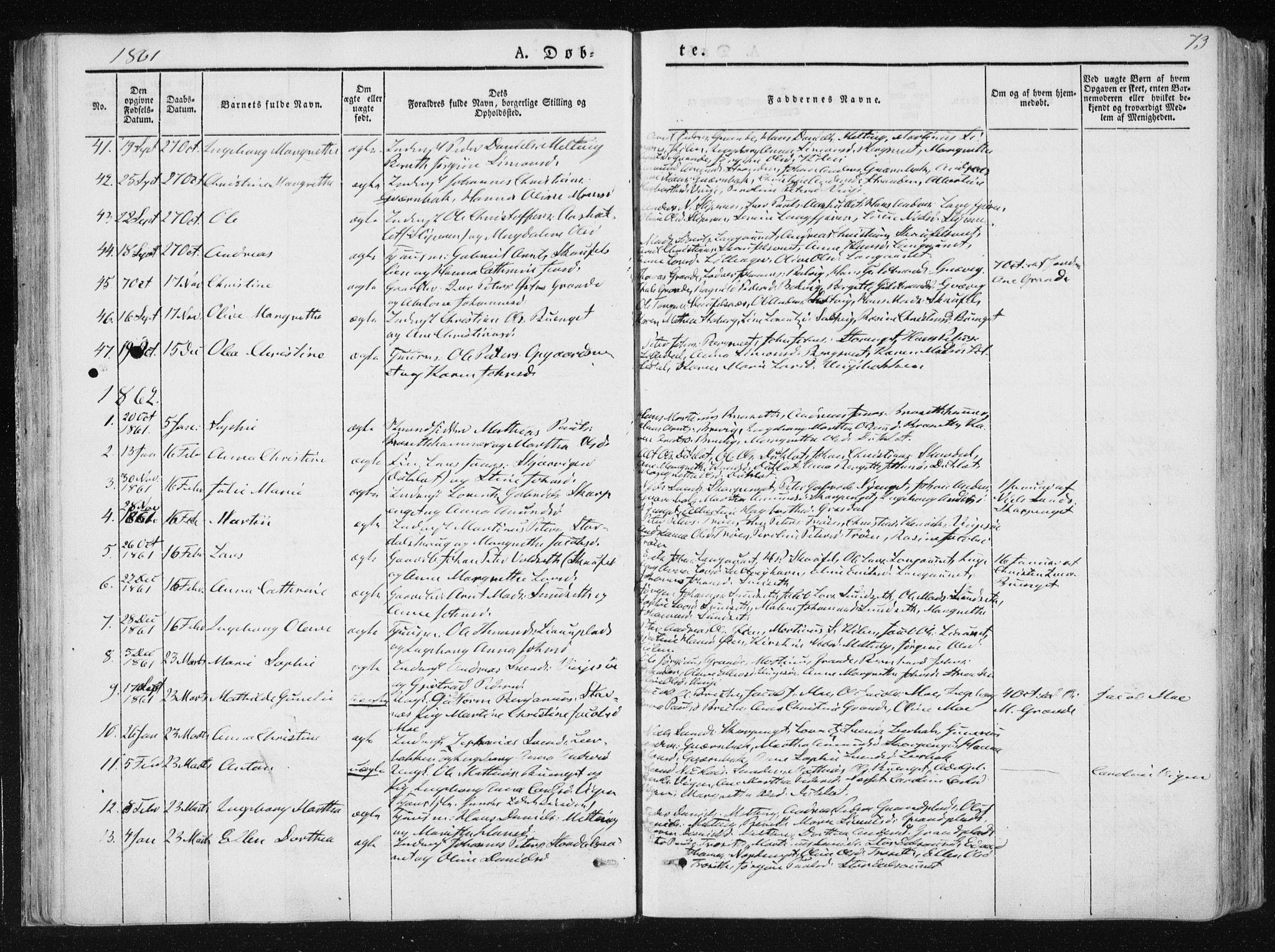 SAT, Ministerialprotokoller, klokkerbøker og fødselsregistre - Nord-Trøndelag, 733/L0323: Ministerialbok nr. 733A02, 1843-1870, s. 73