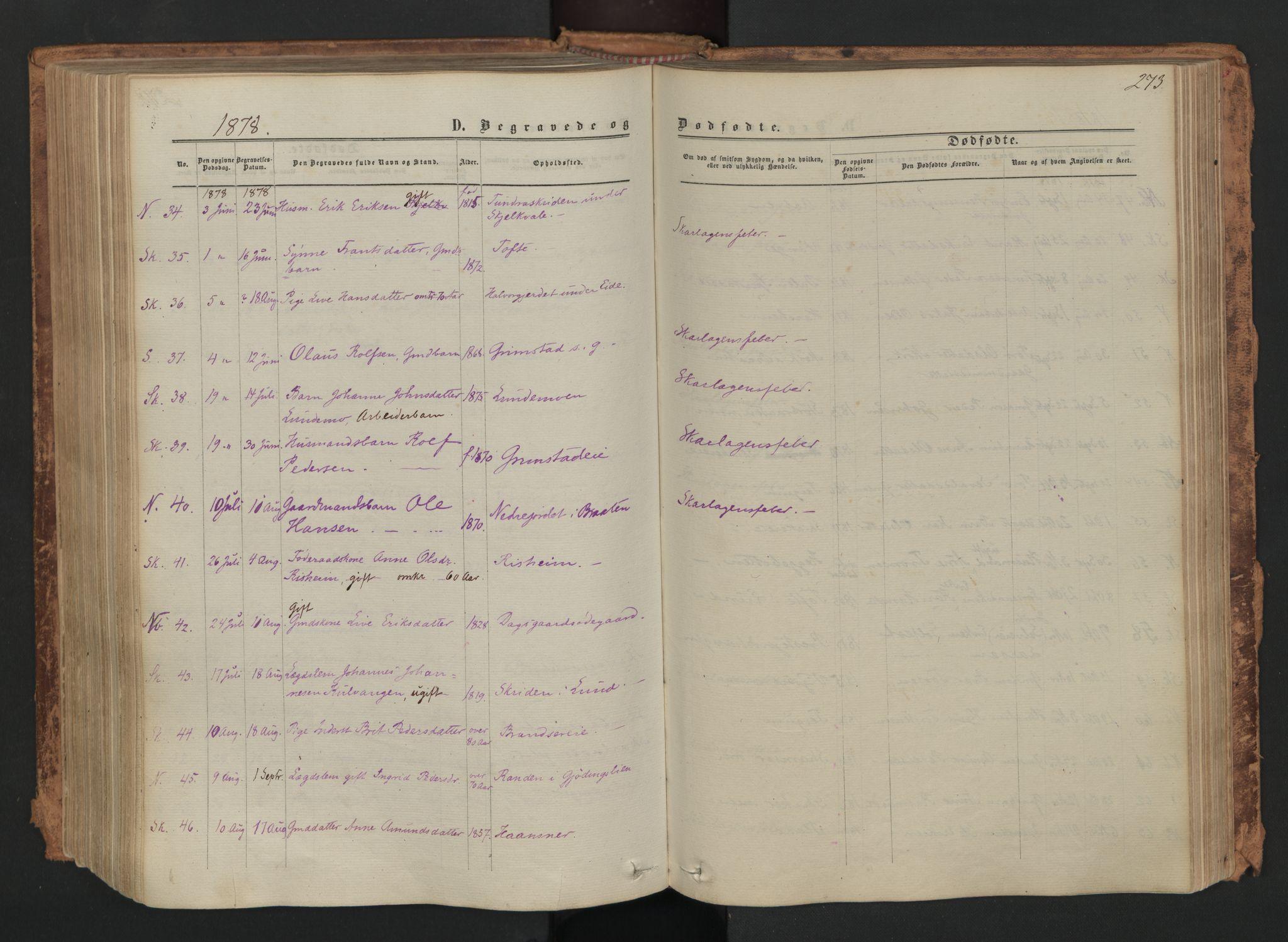 SAH, Skjåk prestekontor, Ministerialbok nr. 1, 1863-1879, s. 273