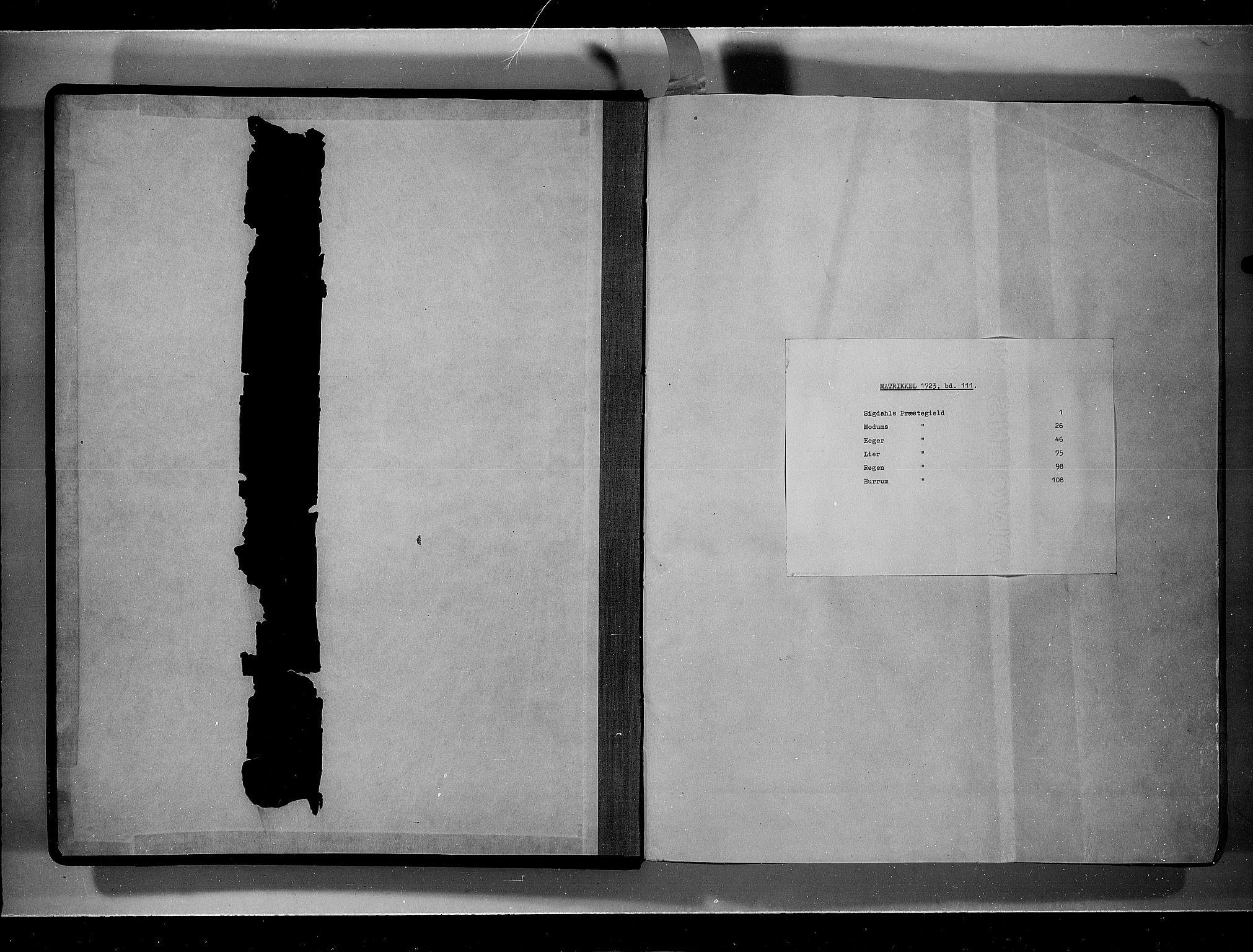RA, Rentekammeret inntil 1814, Realistisk ordnet avdeling, N/Nb/Nbf/L0111: Buskerud eksaminasjonsprotokoll, 1723, s. upaginert