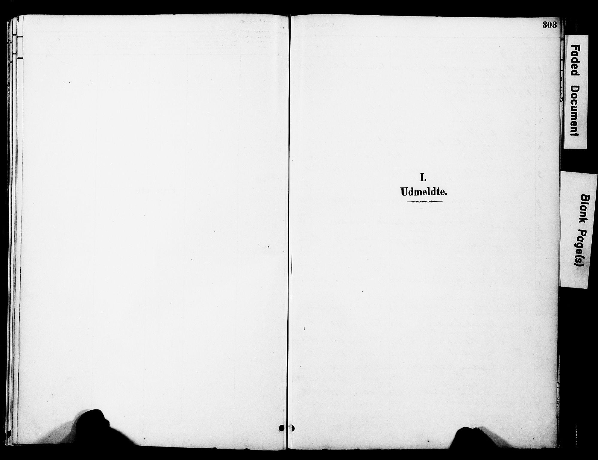 SAT, Ministerialprotokoller, klokkerbøker og fødselsregistre - Nord-Trøndelag, 774/L0628: Ministerialbok nr. 774A02, 1887-1903, s. 303