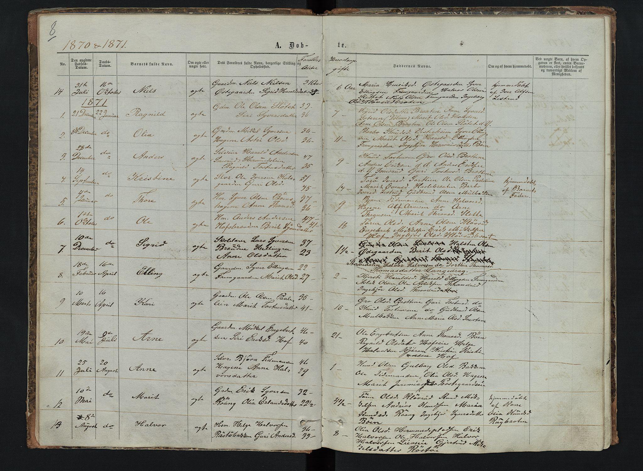 SAH, Sør-Aurdal prestekontor, Klokkerbok nr. 6, 1866-1893, s. 8