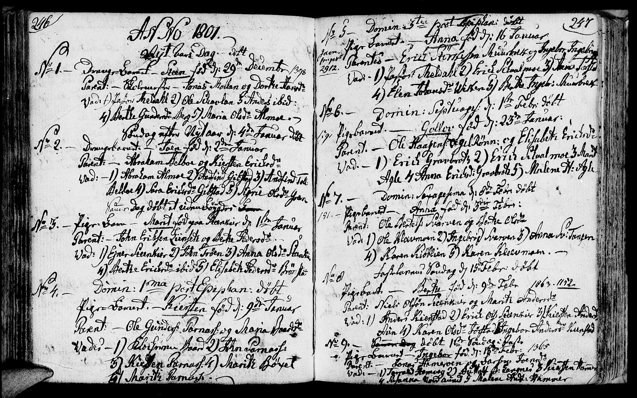 SAT, Ministerialprotokoller, klokkerbøker og fødselsregistre - Nord-Trøndelag, 749/L0468: Ministerialbok nr. 749A02, 1787-1817, s. 246-247