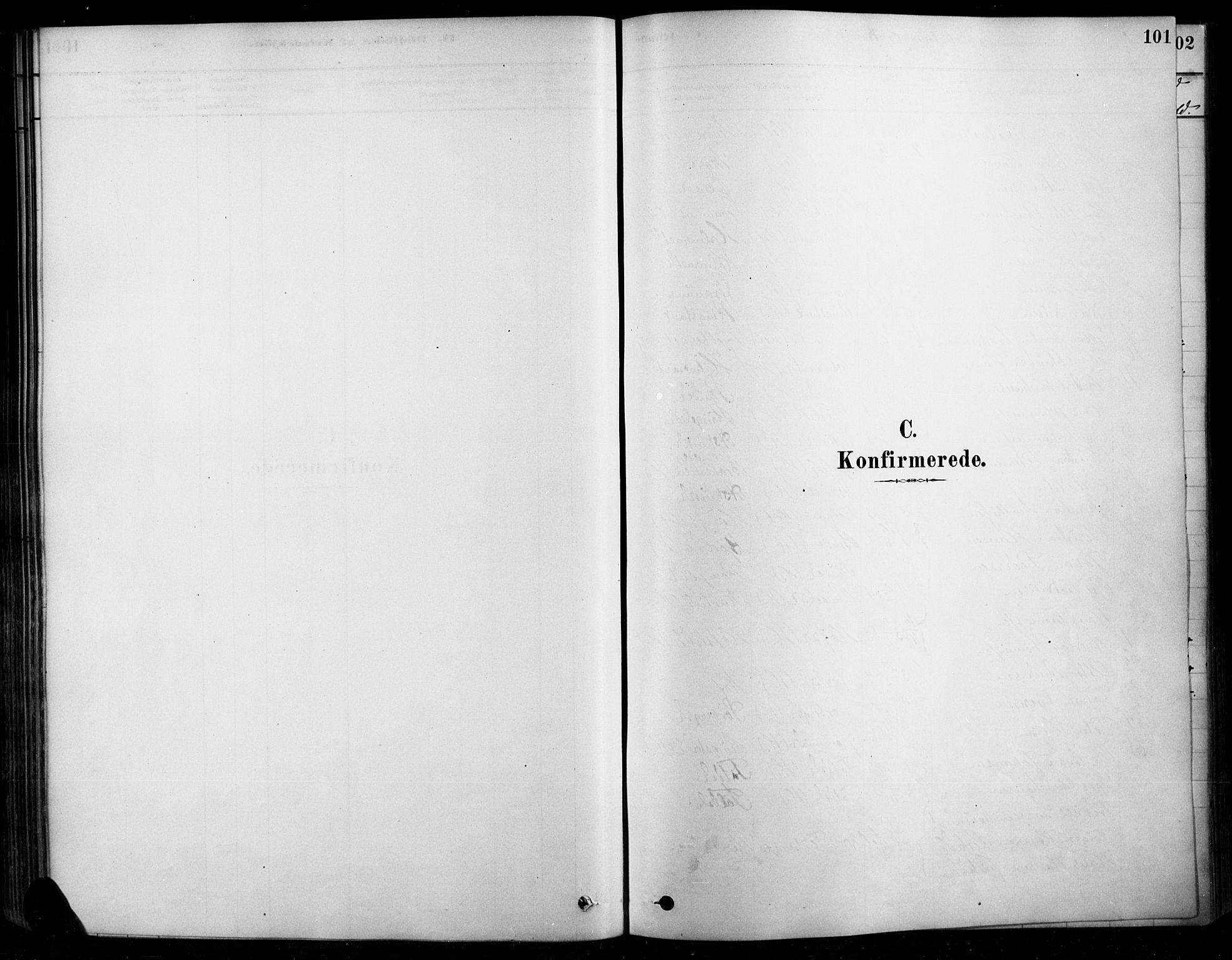 SAH, Søndre Land prestekontor, K/L0003: Ministerialbok nr. 3, 1878-1894, s. 101
