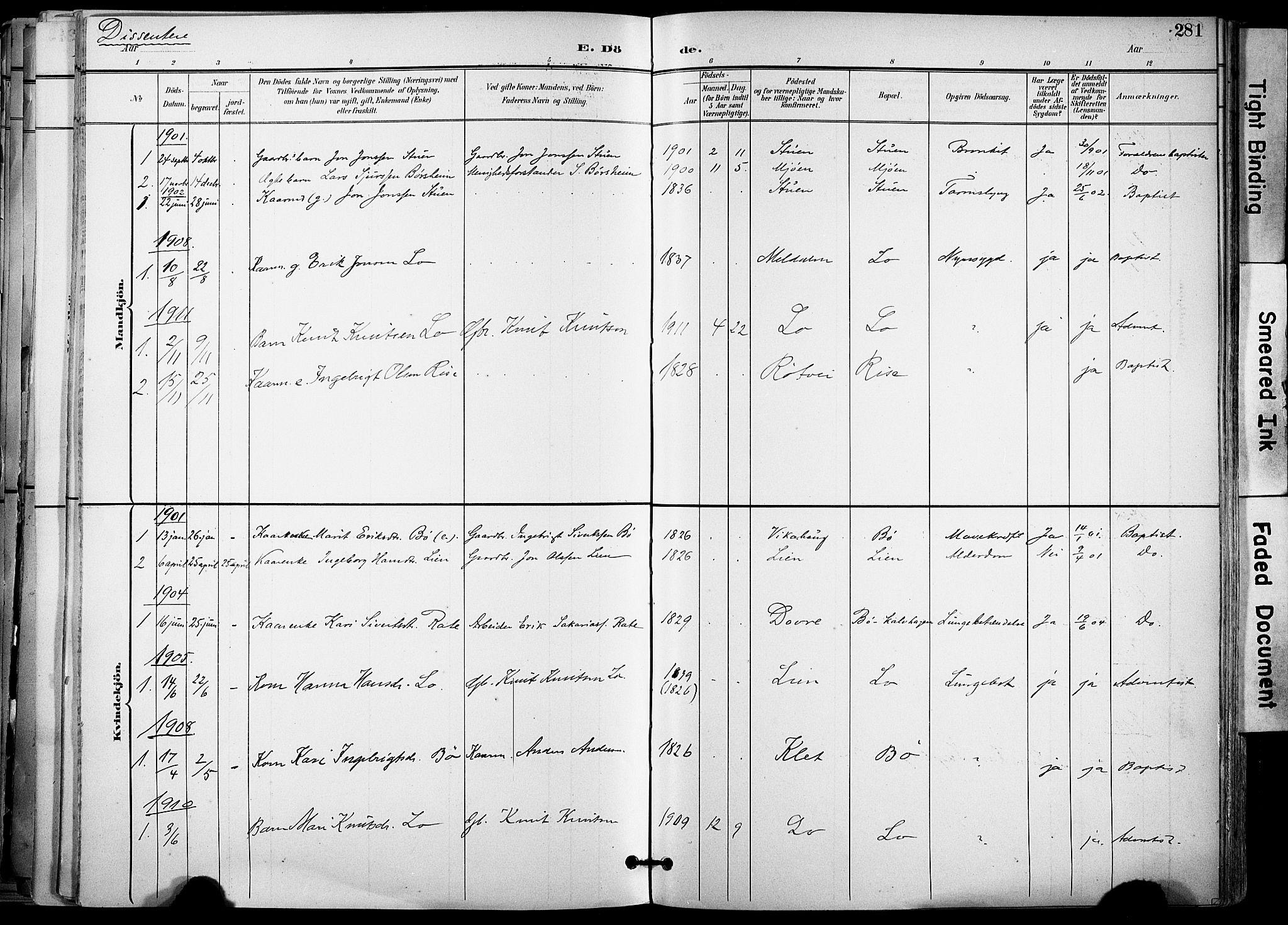 SAT, Ministerialprotokoller, klokkerbøker og fødselsregistre - Sør-Trøndelag, 678/L0902: Ministerialbok nr. 678A11, 1895-1911, s. 281