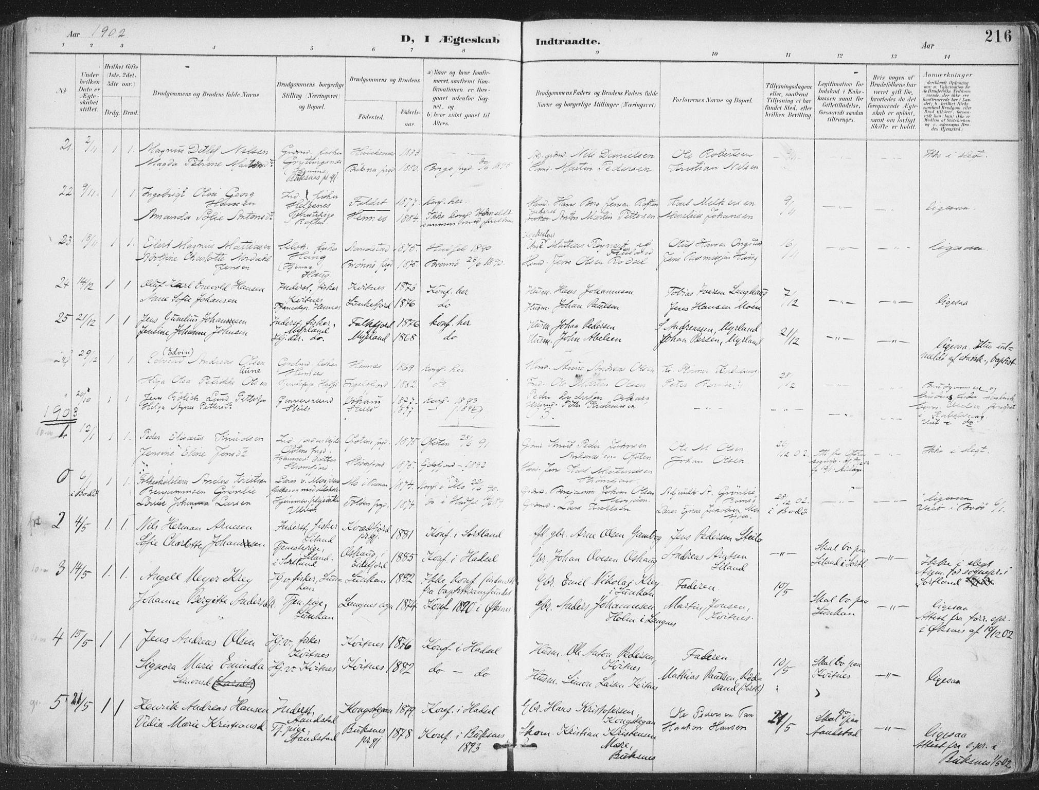 SAT, Ministerialprotokoller, klokkerbøker og fødselsregistre - Nordland, 888/L1246: Ministerialbok nr. 888A12, 1891-1903, s. 216