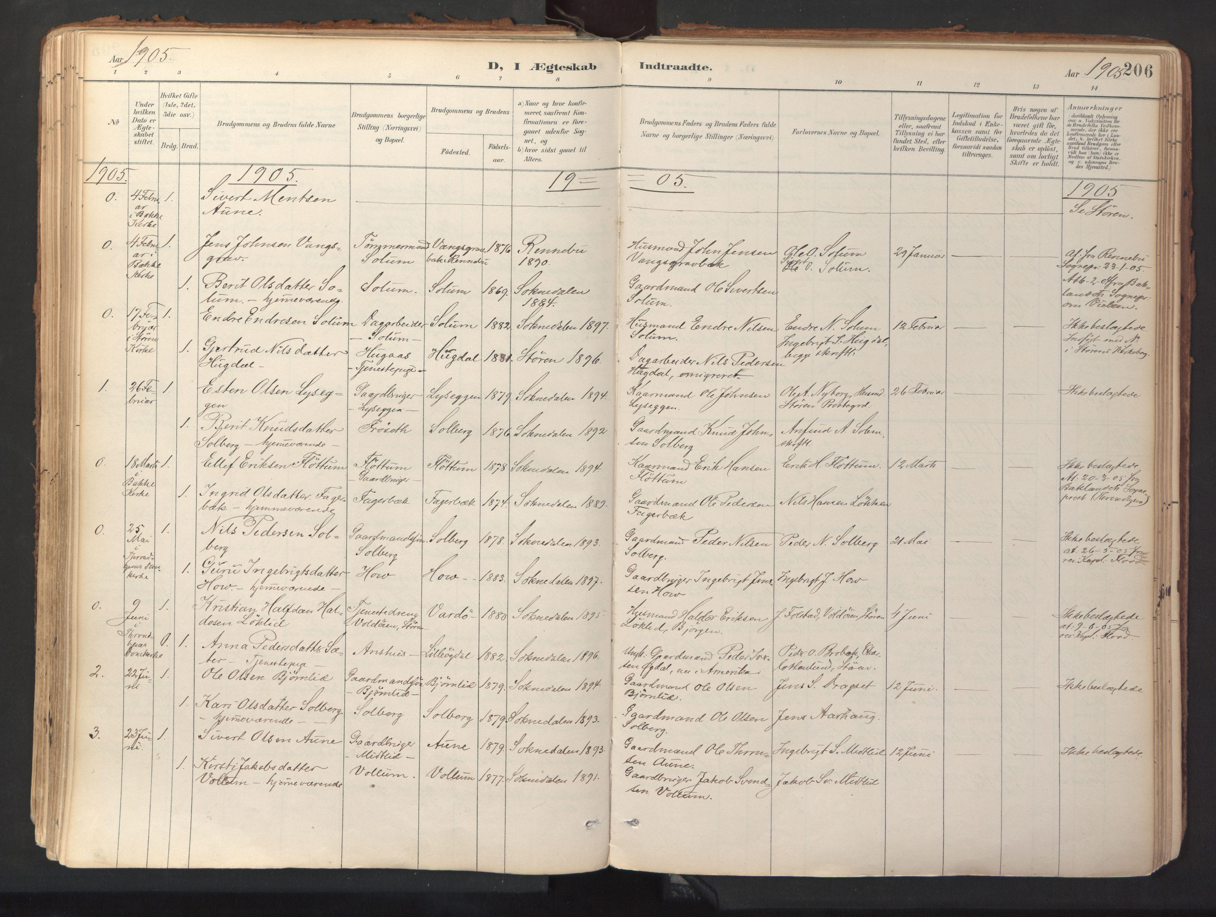SAT, Ministerialprotokoller, klokkerbøker og fødselsregistre - Sør-Trøndelag, 689/L1041: Ministerialbok nr. 689A06, 1891-1923, s. 206