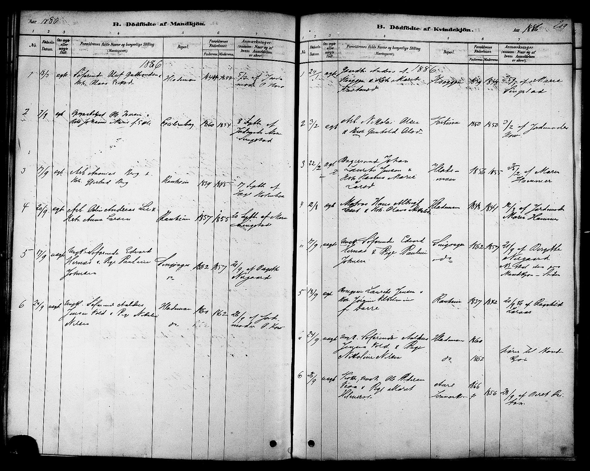SAT, Ministerialprotokoller, klokkerbøker og fødselsregistre - Sør-Trøndelag, 606/L0294: Ministerialbok nr. 606A09, 1878-1886, s. 209