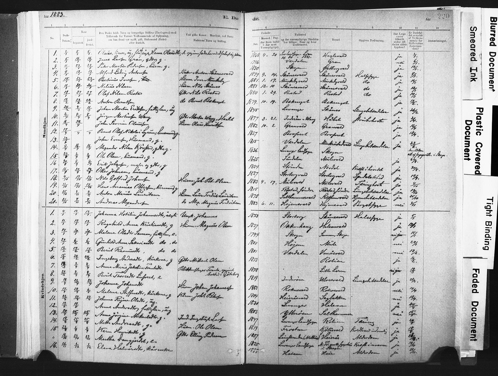 SAT, Ministerialprotokoller, klokkerbøker og fødselsregistre - Nord-Trøndelag, 721/L0207: Ministerialbok nr. 721A02, 1880-1911, s. 220
