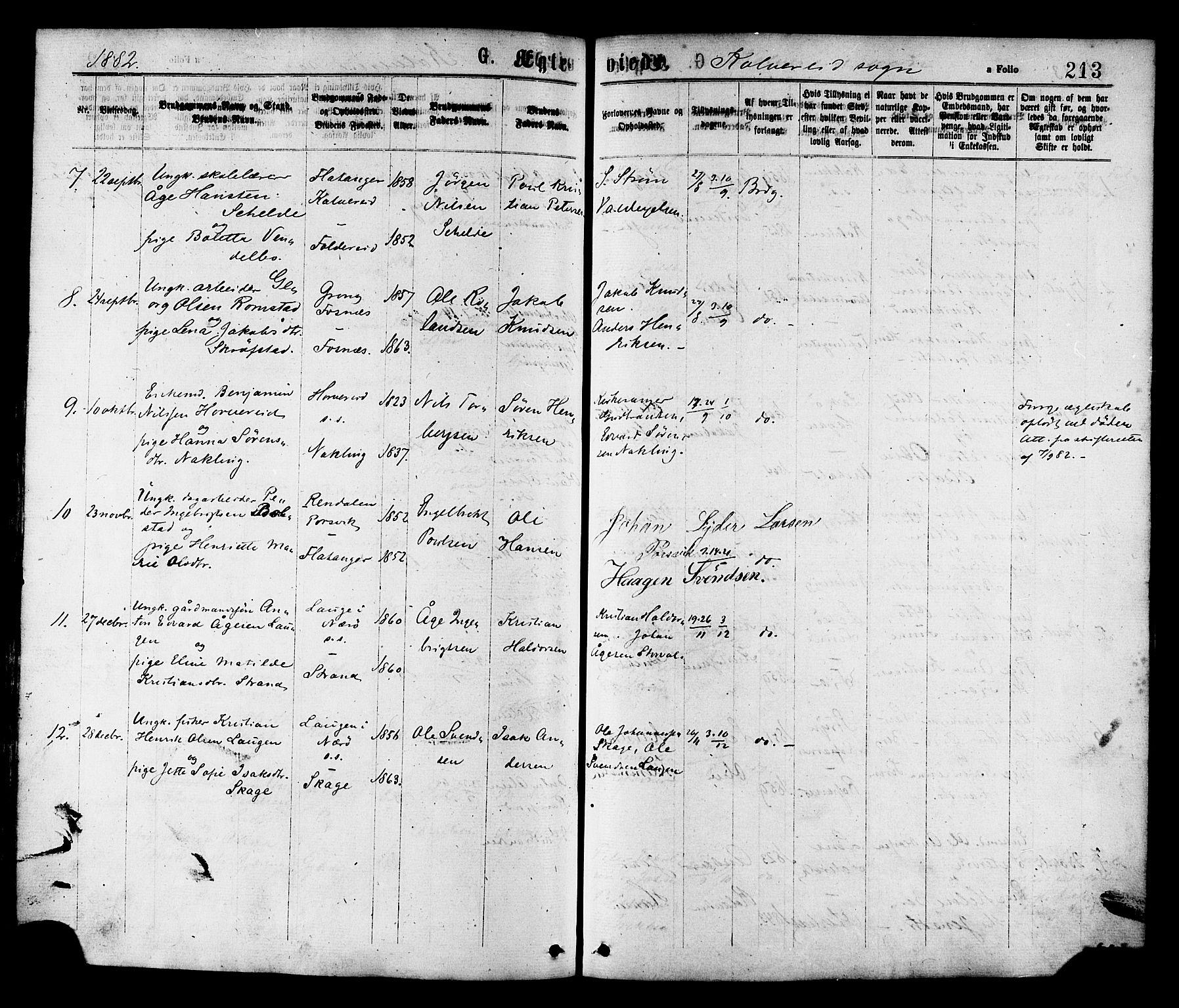 SAT, Ministerialprotokoller, klokkerbøker og fødselsregistre - Nord-Trøndelag, 780/L0642: Ministerialbok nr. 780A07 /1, 1874-1885, s. 213