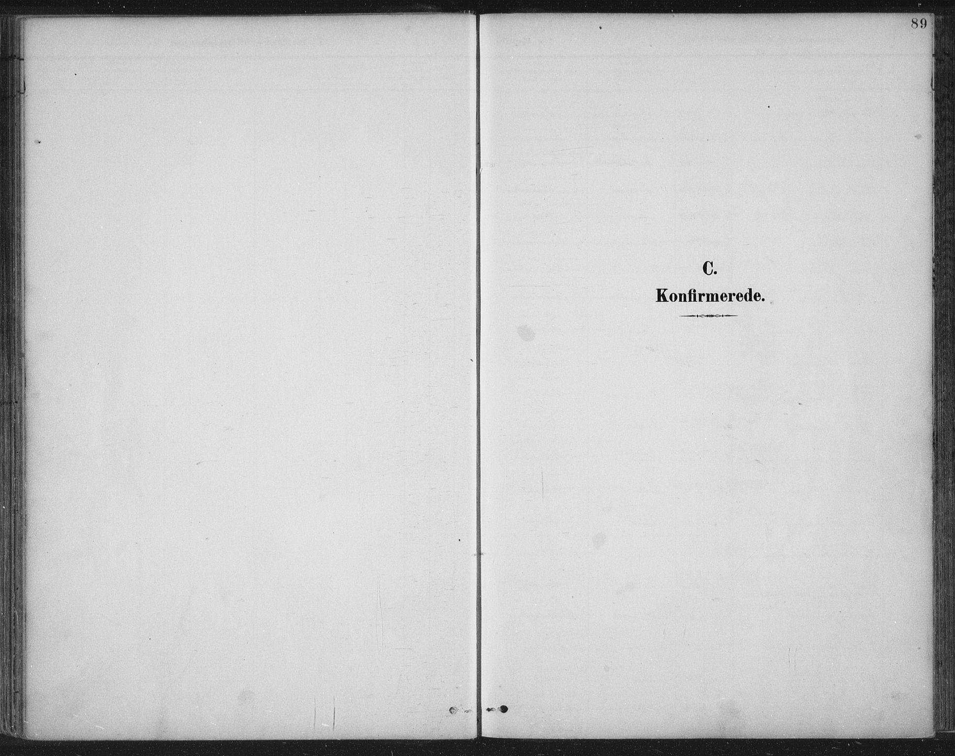 SAST, Tysvær sokneprestkontor, H/Ha/Haa/L0008: Ministerialbok nr. A 8, 1897-1918, s. 89