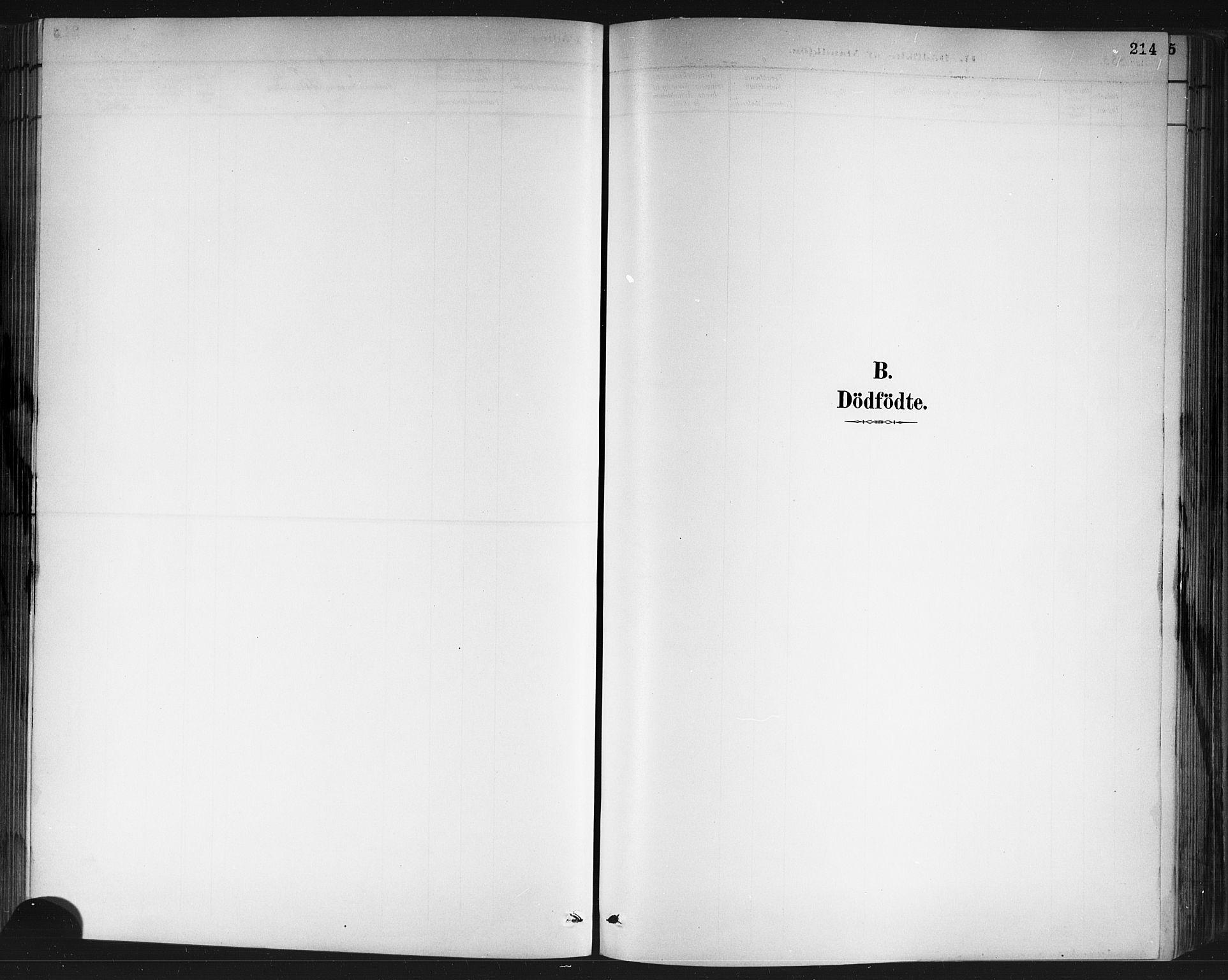 SAKO, Porsgrunn kirkebøker , G/Gb/L0005: Klokkerbok nr. II 5, 1883-1915, s. 214