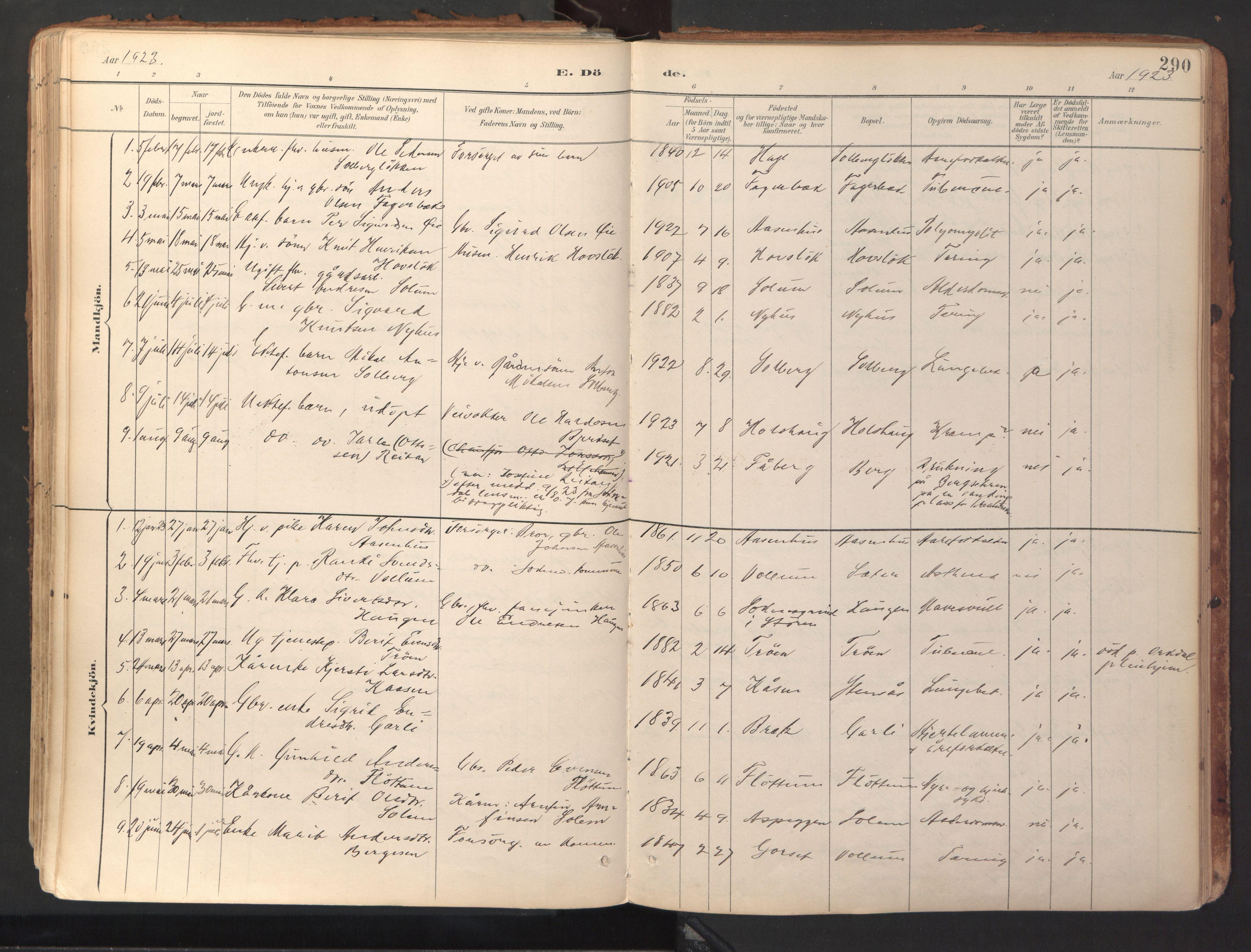 SAT, Ministerialprotokoller, klokkerbøker og fødselsregistre - Sør-Trøndelag, 689/L1041: Ministerialbok nr. 689A06, 1891-1923, s. 290
