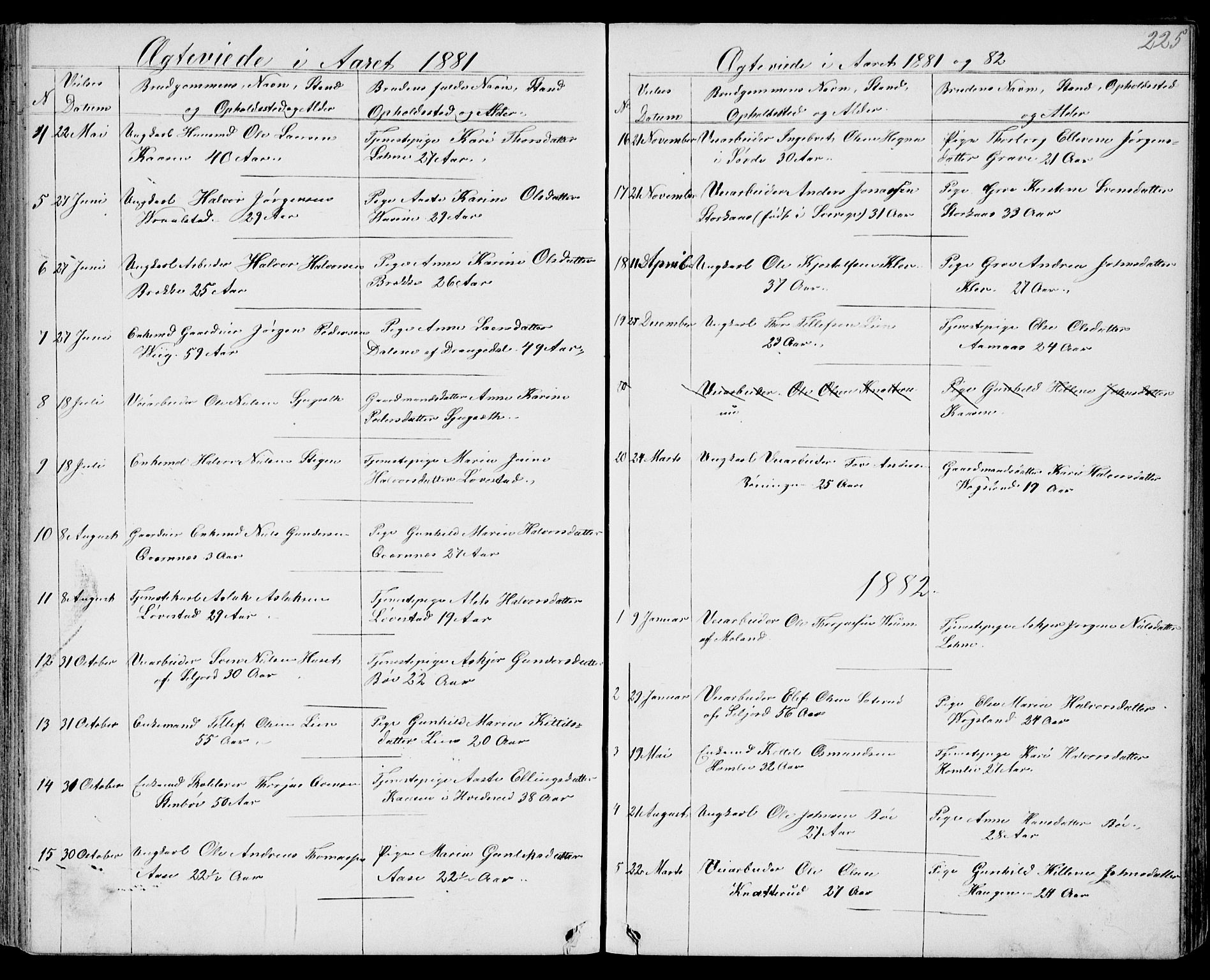 SAKO, Drangedal kirkebøker, G/Gb/L0001: Klokkerbok nr. II 1, 1856-1894, s. 225